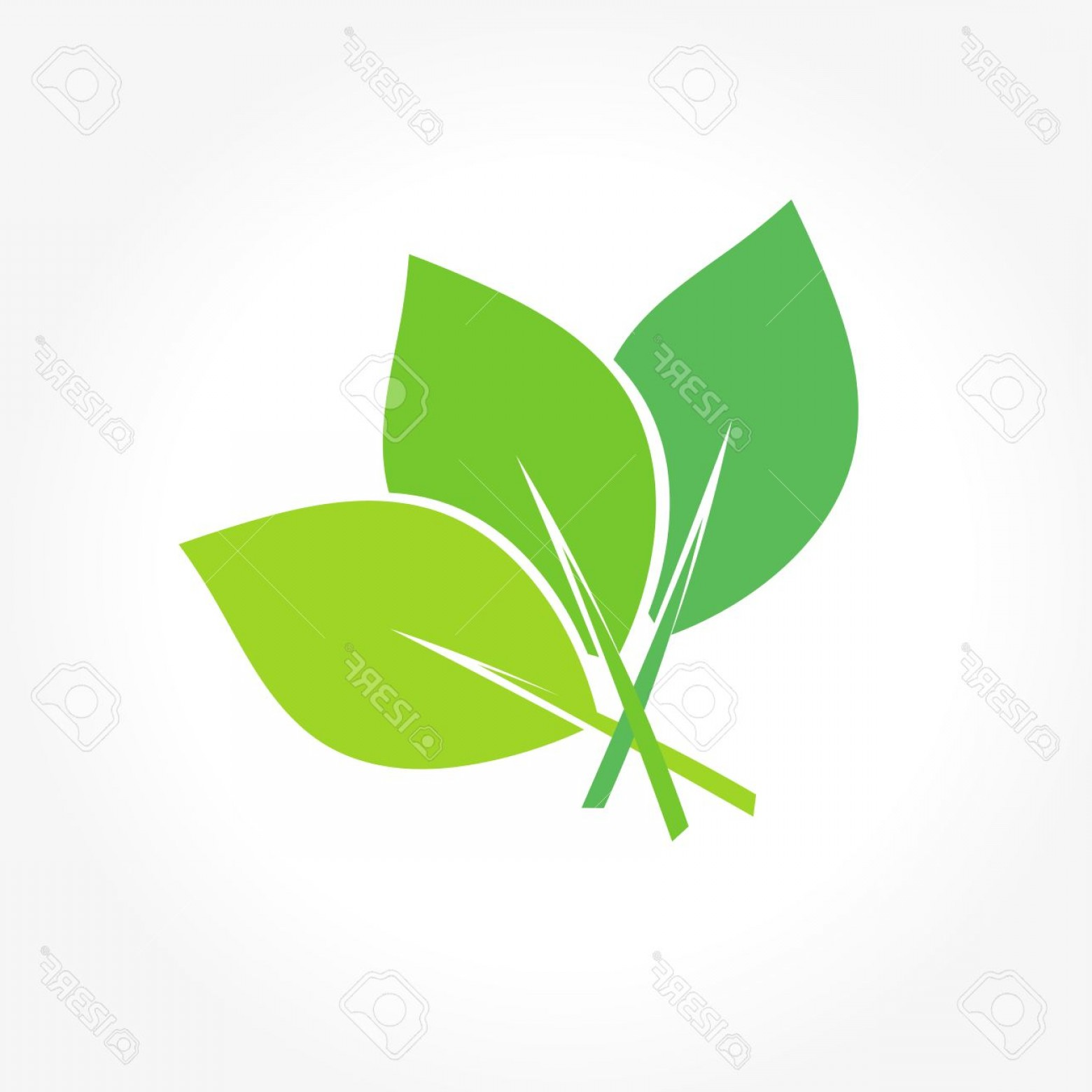 Vector Leaf Graphicd: Photostock Vector Leaves Icon Leaf Symbol Flat Leaf Icon Leaves Illustration Green Leaf Vector Graphic Leaves Leaf Vec