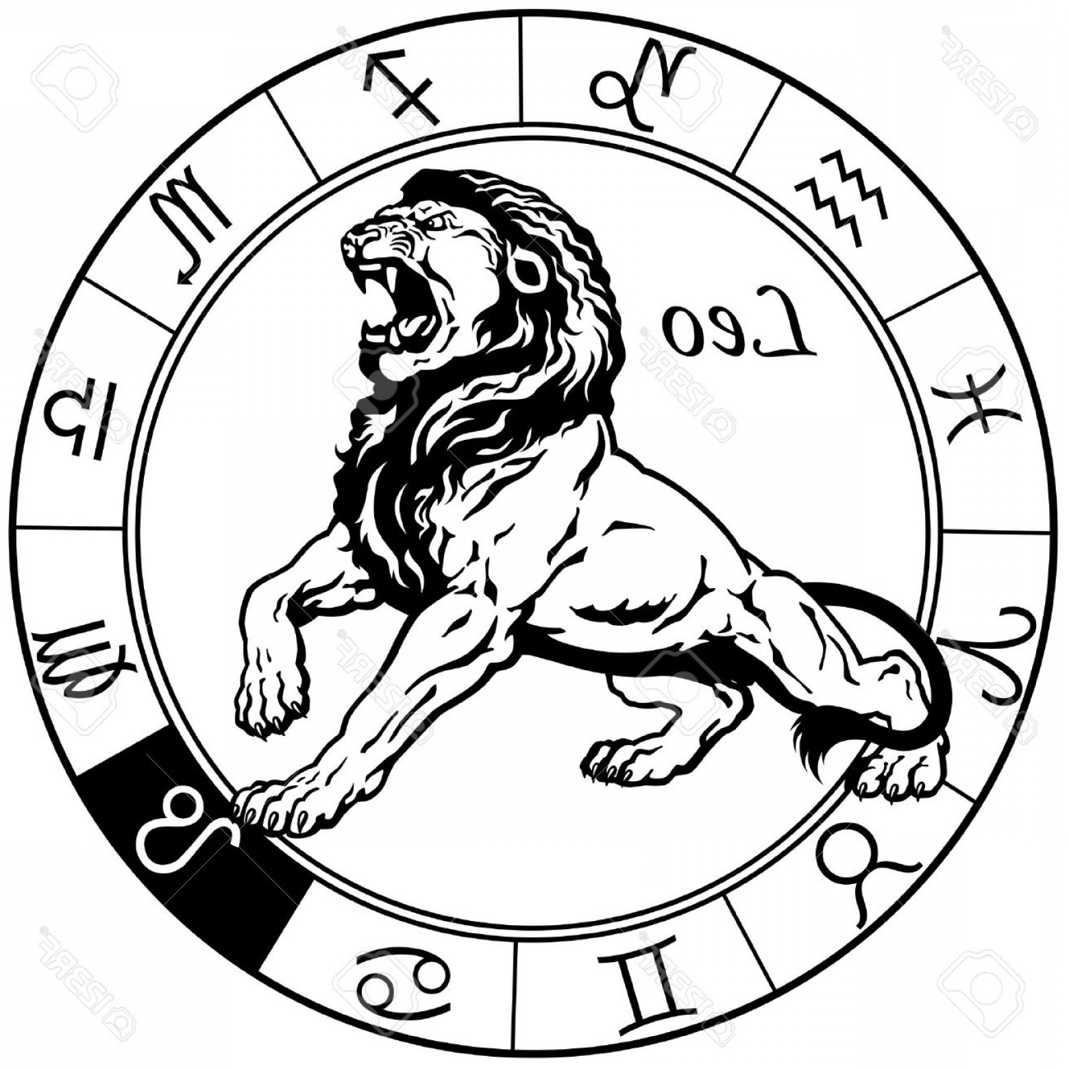 Leo Symbol Zodiac Vector: Photostock Vector Leo Or Lion Astrological Zodiac Sign Black And White Image