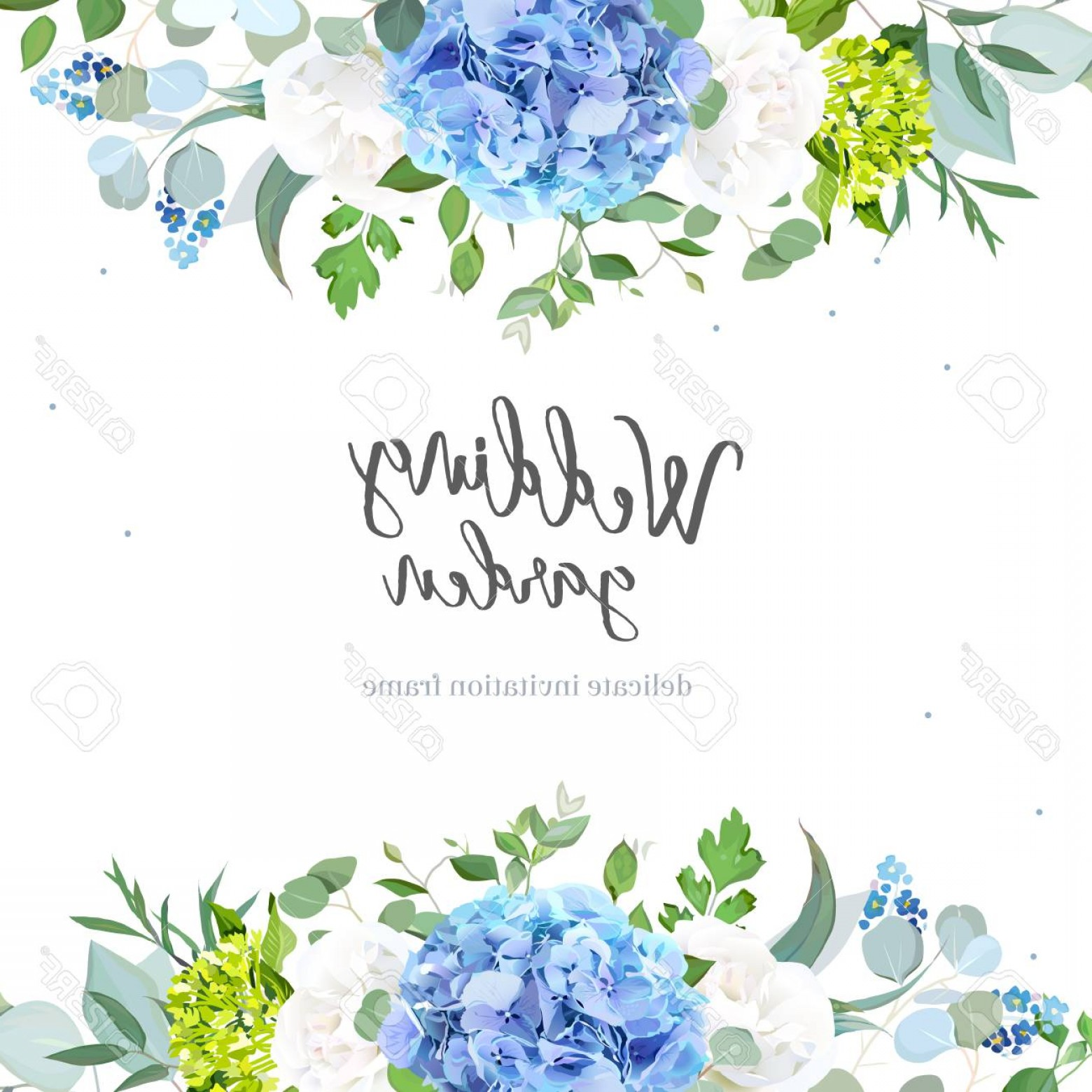 Vector Image Blue Hydrangeas: Photostock Vector Light Blue Hydrangea White Rose Forget Me Not Wildflowers Euc