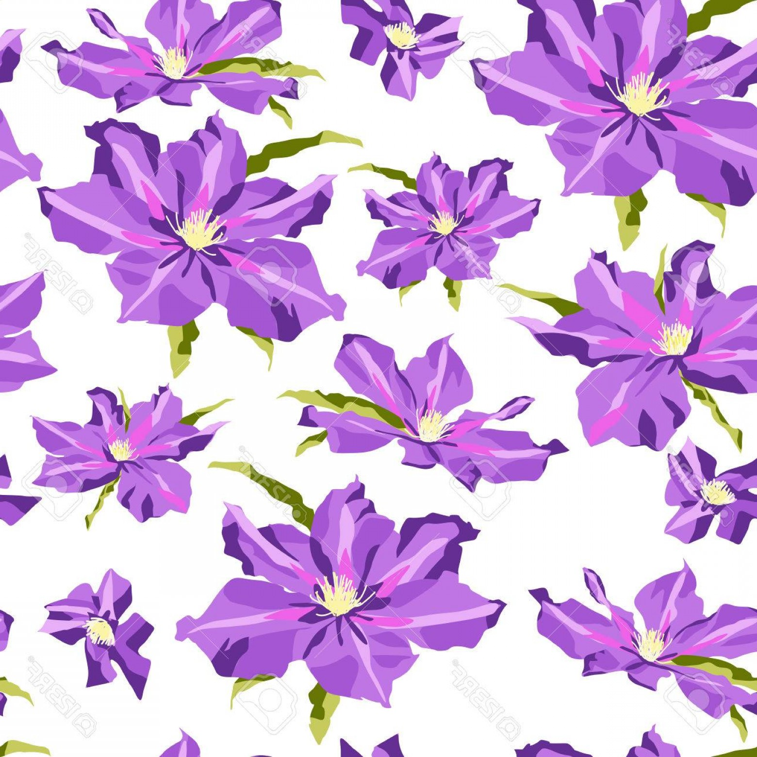 Lilac Vector Drawing: Photostock Vector Lilac Clematis Flowers On White Background Freehand Drawing Seamless Pattern