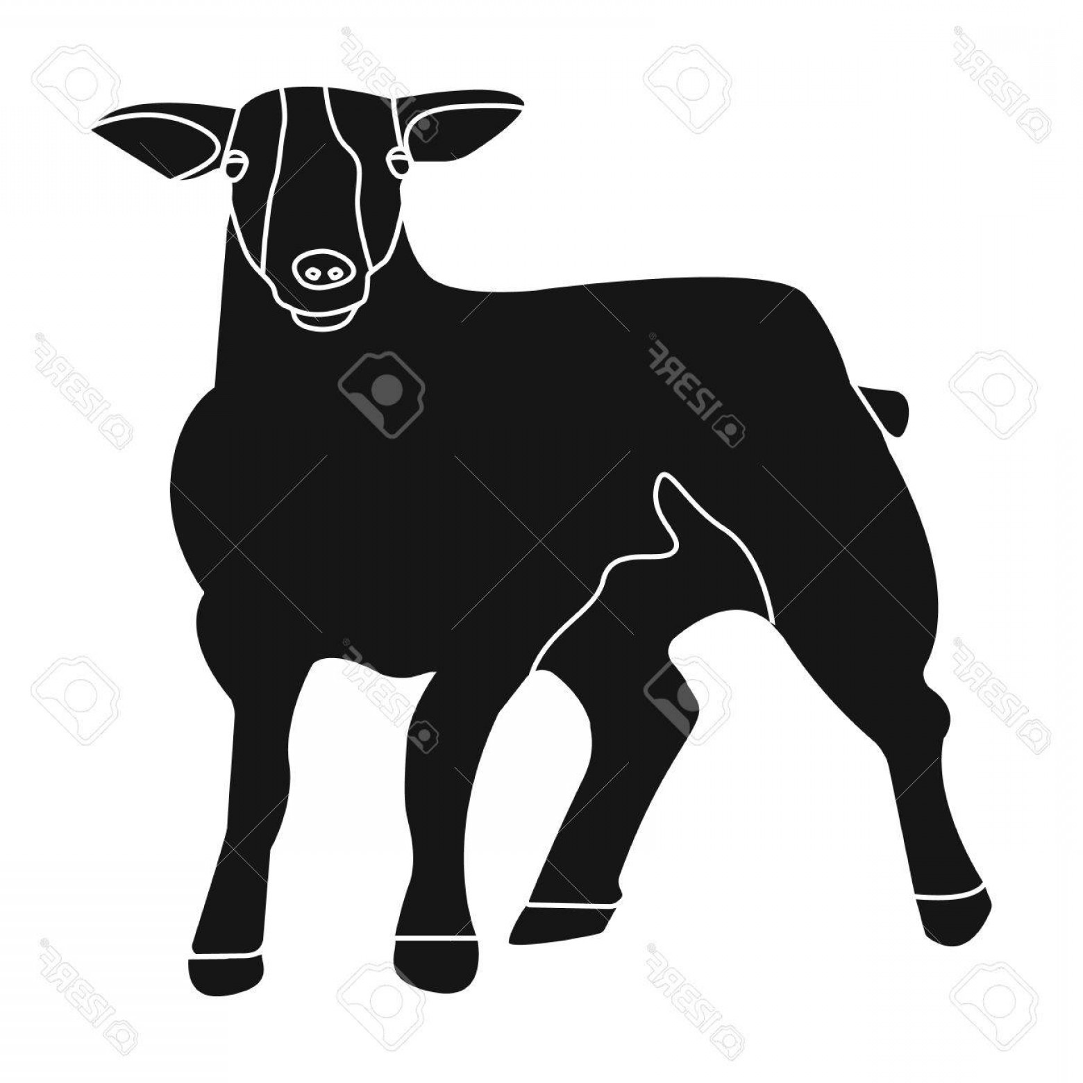 White Mountain Silhouette Vector Free: Photostock Vector Little White Mountain Sheep Scottish Fold Sheep Scotland Single Icon In Black Style Vector Symbol St