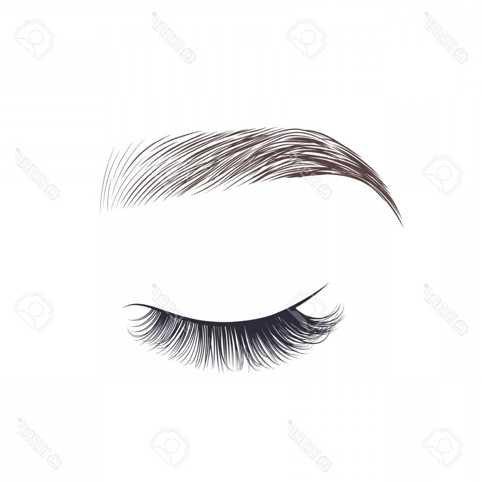 Vector Illustration Eyes Makeup: Photostock Vector Makeup Eyebrow Closed Eye With Long Eyelashes Vector Illustration