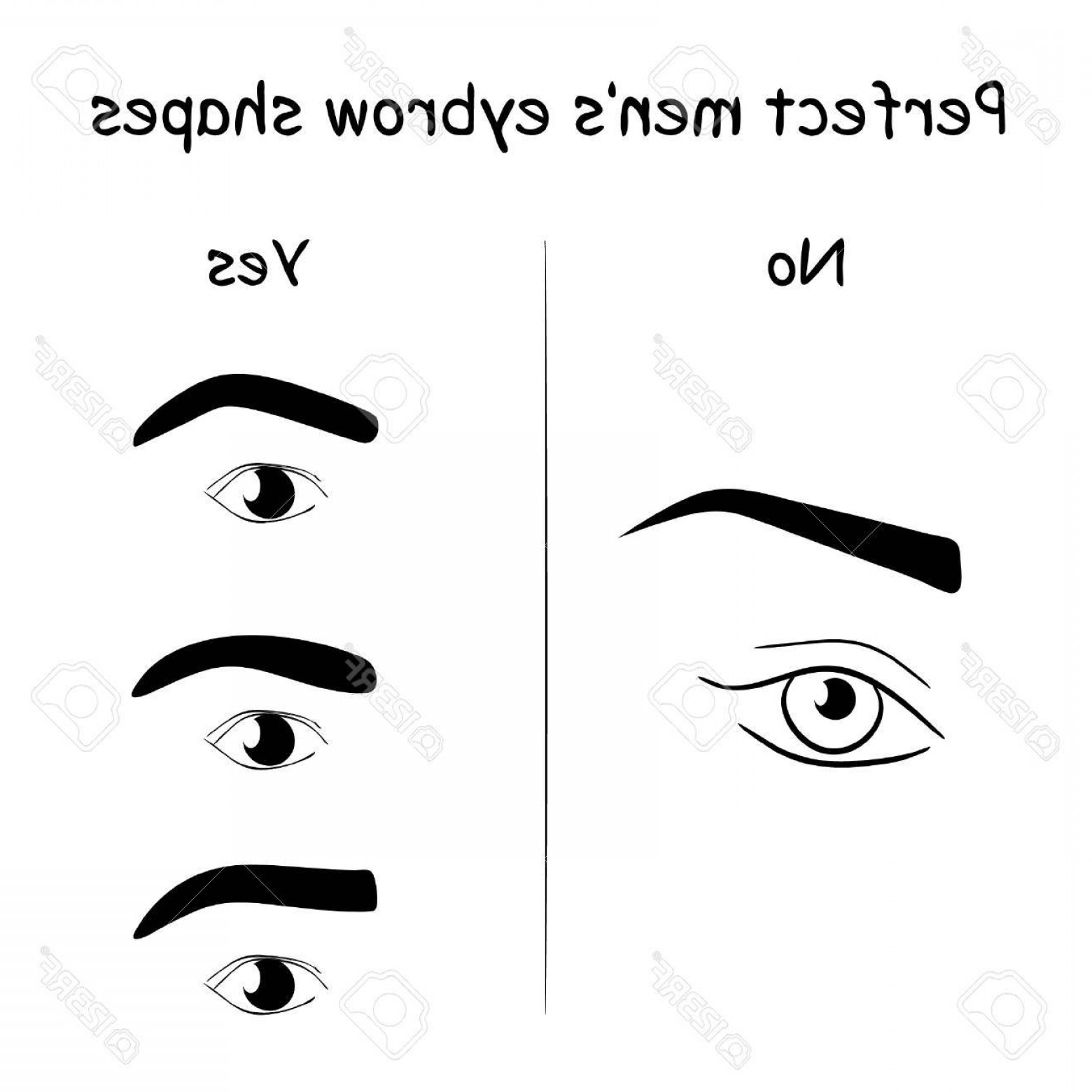Male Eyes Vector Graphic: Photostock Vector Male Eyes And Eyebrows Vector Elements Illustration How To Shape Men S Brows