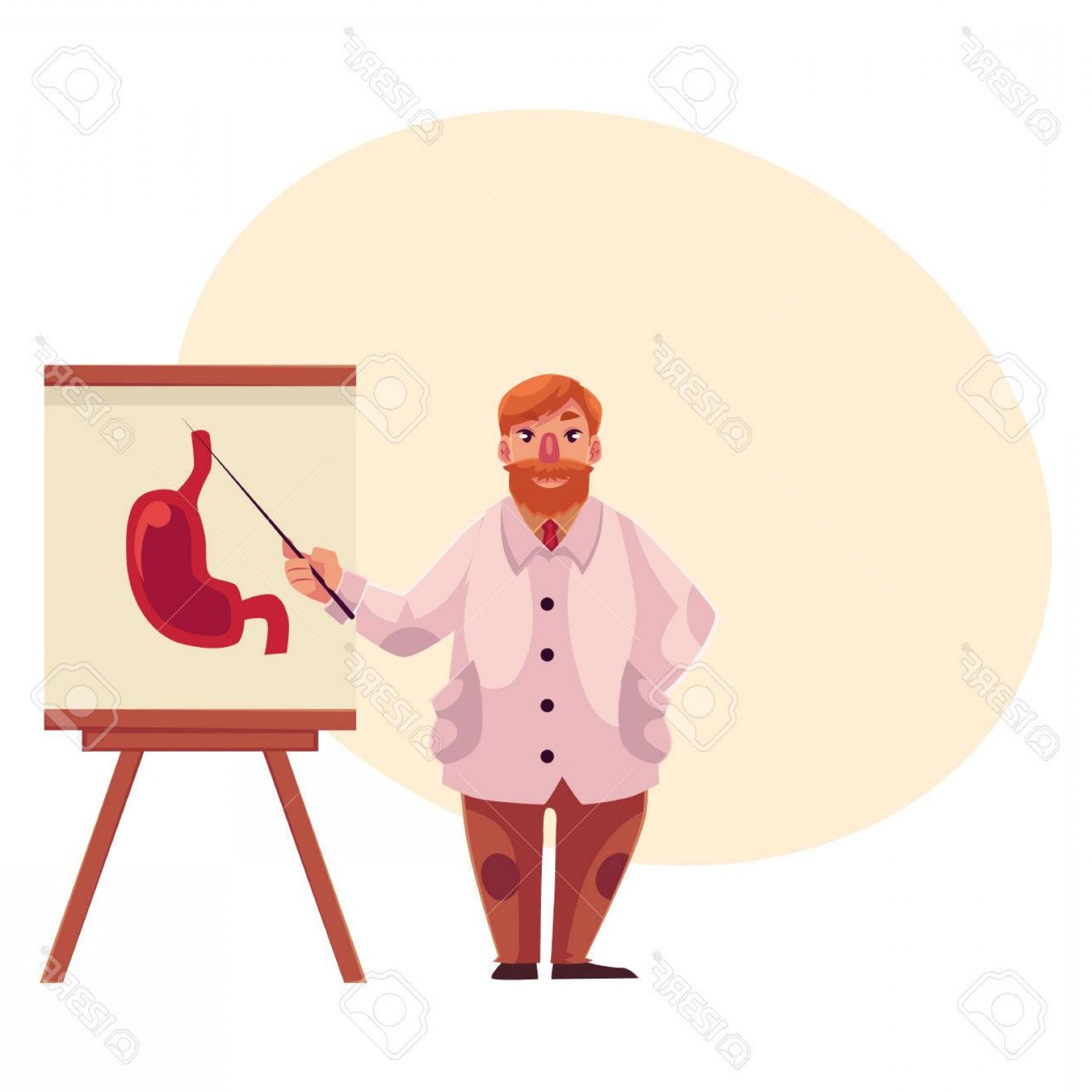 Lab Coat Cartoon Vector: Photostock Vector Male Gastroenterologist In Lab Coat Pointing To Stomach On Poster Cartoon Vector On Background With