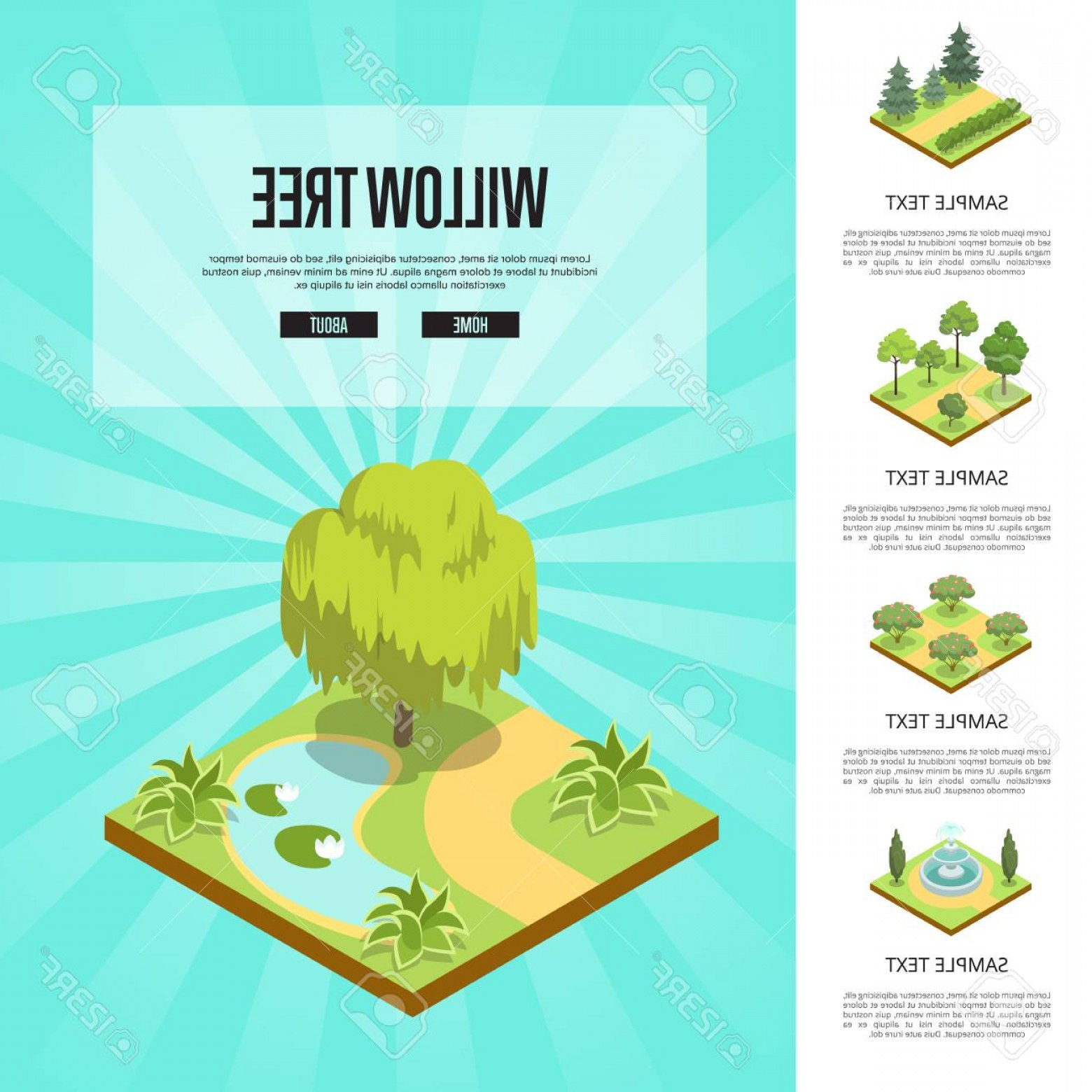 Vector Water Willow: Photostock Vector Natural Parkland Landscape With Willow Tree Isometric Infographics Public Park Zone Decoration Field