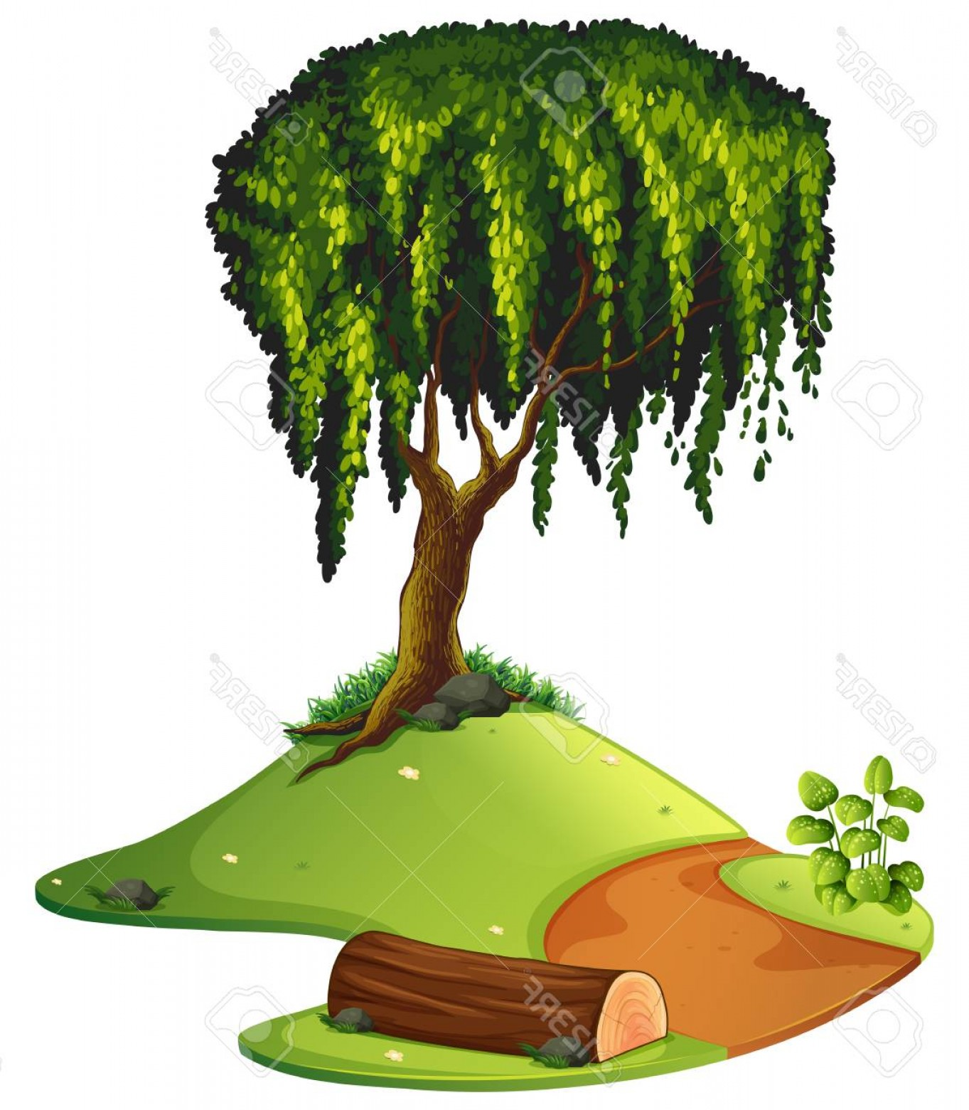 Vector Natural Willow: Photostock Vector Nature Scene With Willow Tree By The Road Illustration