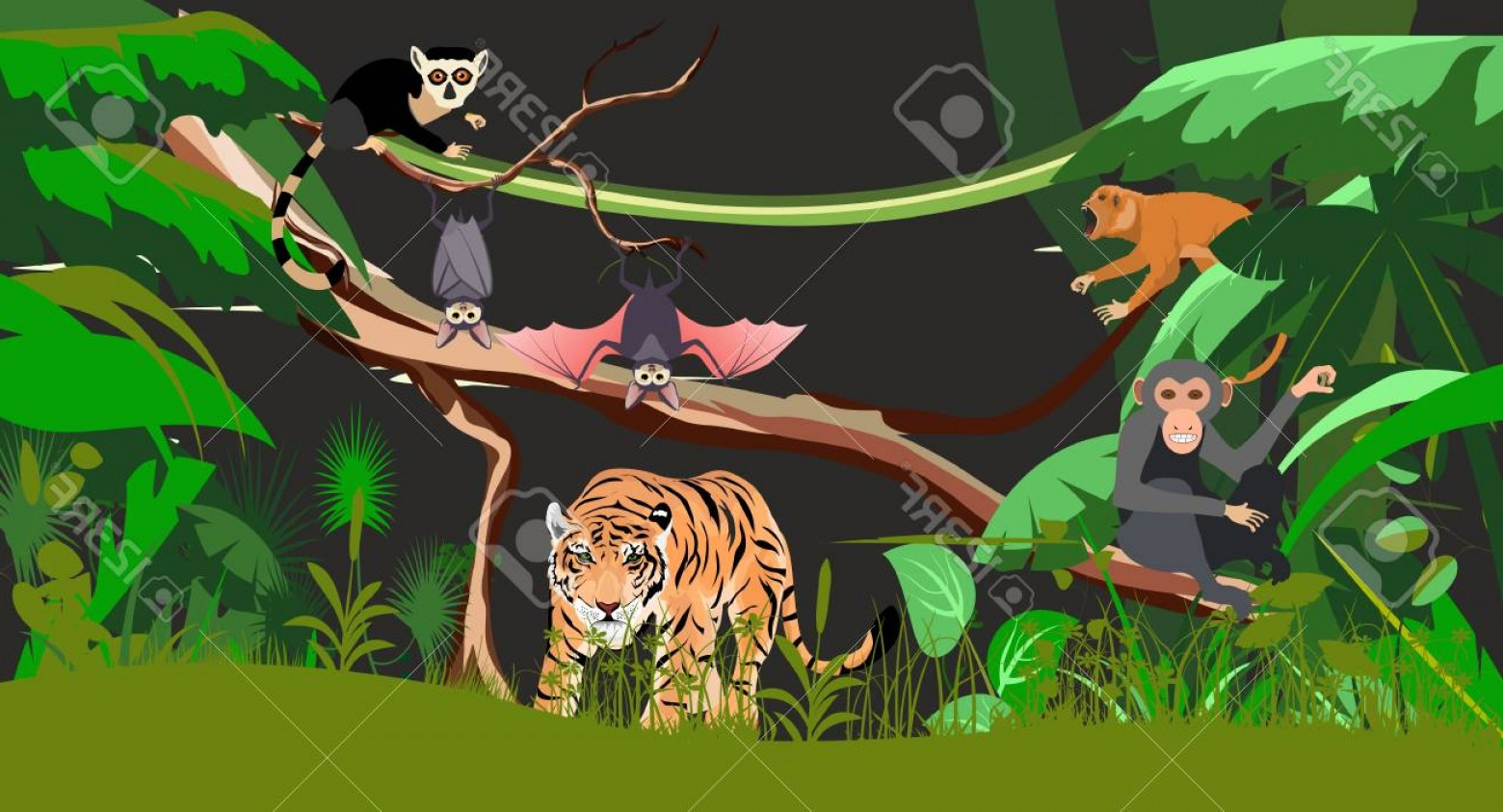 Green Tiger Vector: Photostock Vector Night Jungle Scene Tropical Animals Tiger Ape Bat Vector Illustration