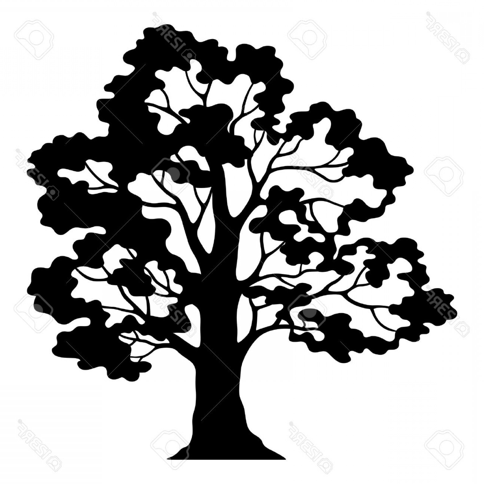 Oak Leaf Vector Clip Art: Photostock Vector Oak Tree Pictogram Black Silhouette And Contours Isolated On White Background Vector