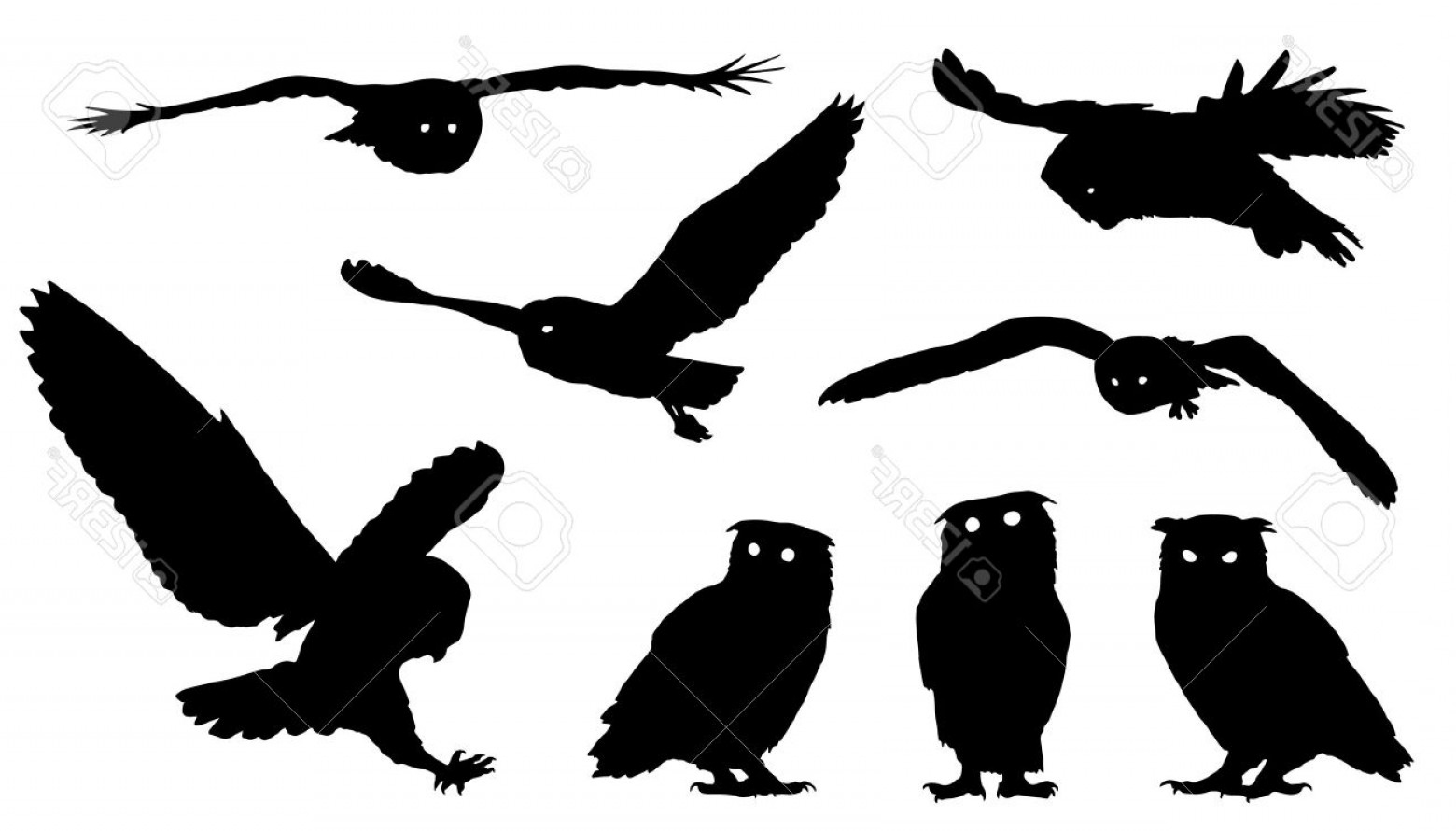 Owl Silhouette Vector Art: Photostock Vector Owl Silhouettes On The White Background