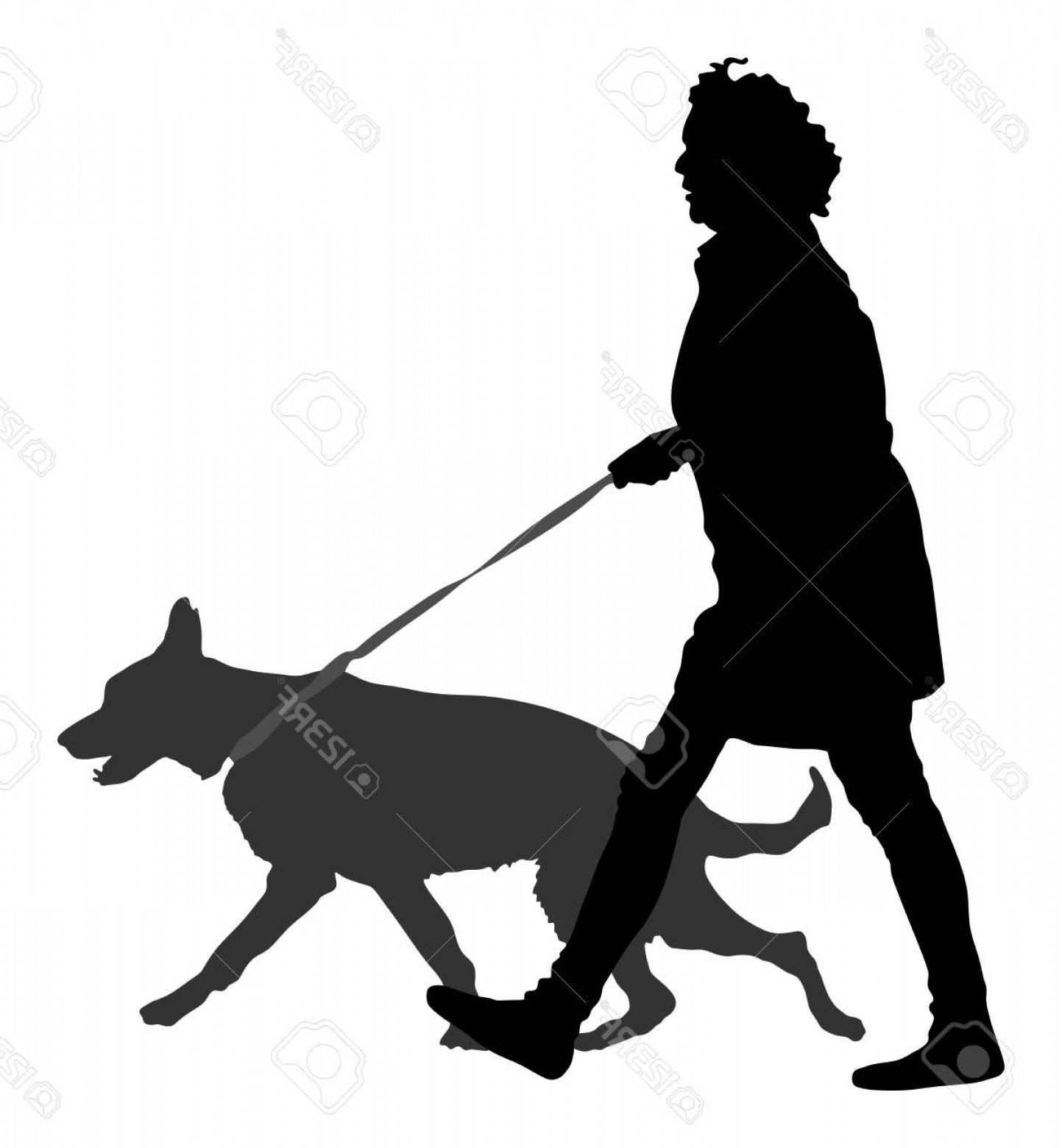 Vector Silhouette Dog Walk: Photostock Vector Owner Girl And Dog Walking In The City Woman Walking With Dog Vector Silhouette Illustration Isolate