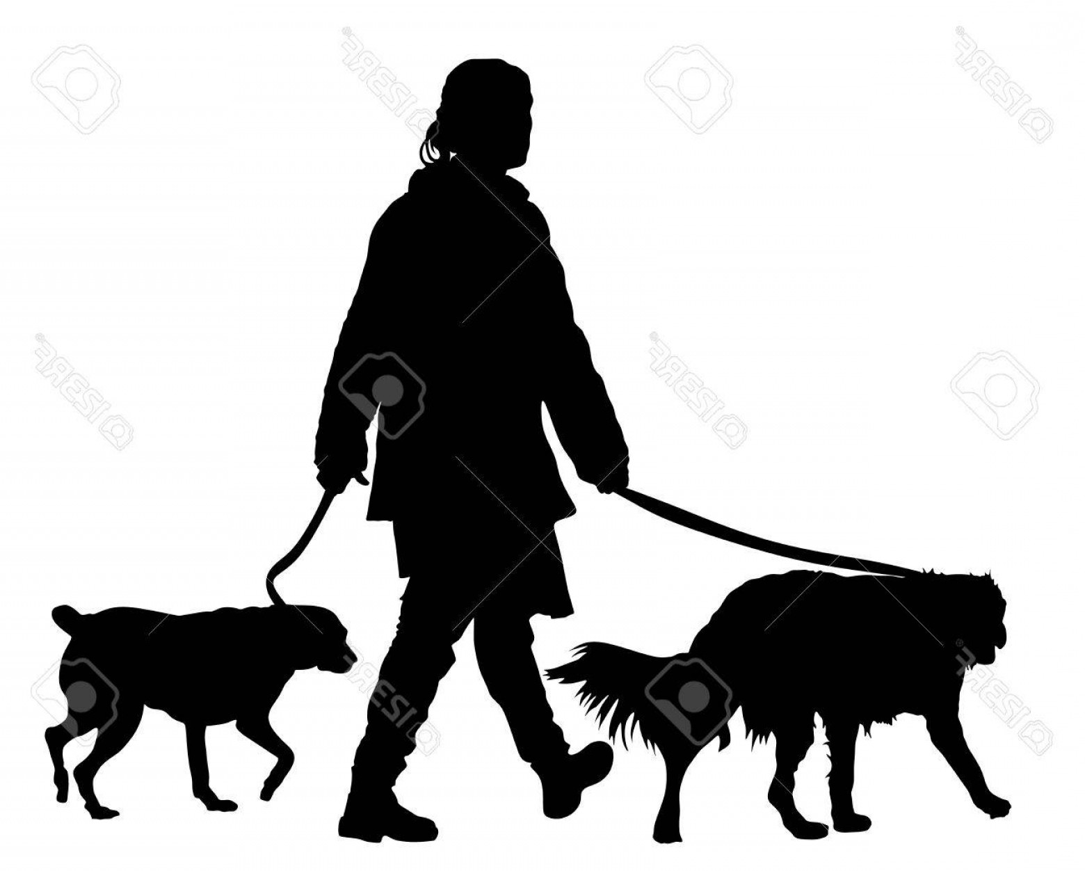 Vector Silhouette Dog Walk: Photostock Vector Owner Girl Walking With Dogs Vector Silhouette Illustration Isolated On White Background
