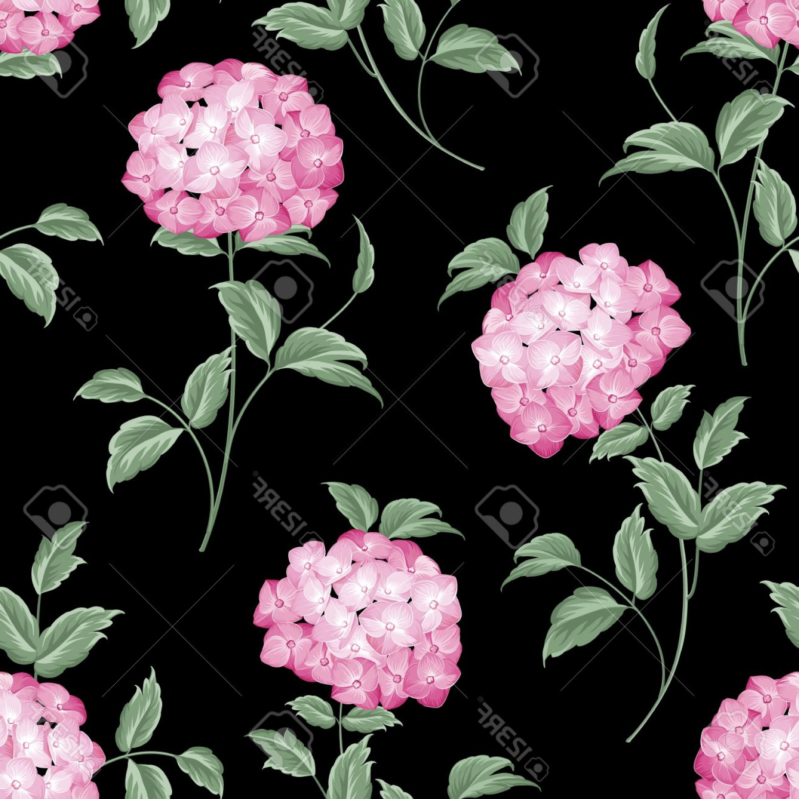 Vector Mop Flower: Photostock Vector Pink Flowers Of Hydrangea On Black Background Mop Head Hydrangea Flower Fabric Pattern Vector Illust
