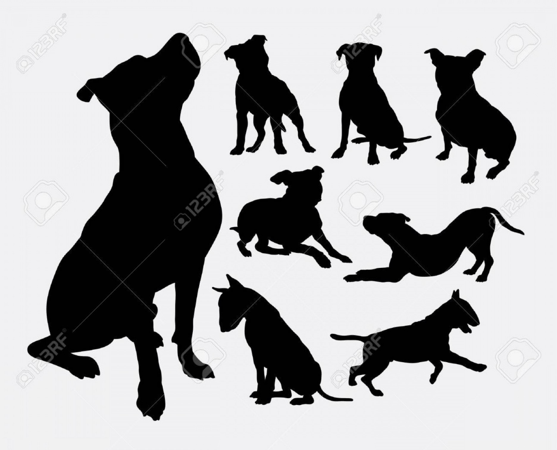 Pit Silhouette Vector: Photostock Vector Pitbull Bulldog Terrier Dog Animal Silhouettes