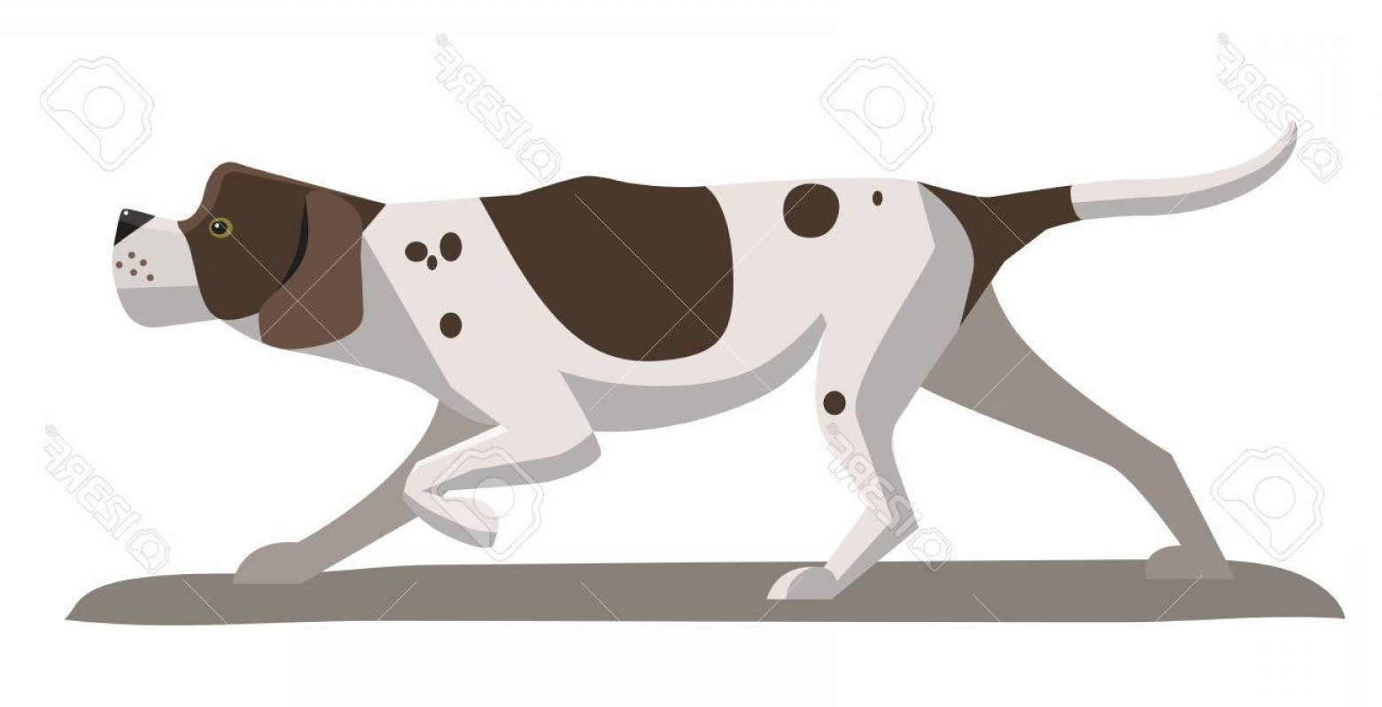 Pointer Dog Vector: Photostock Vector Pointer Dog Minimalist Image On A White Background