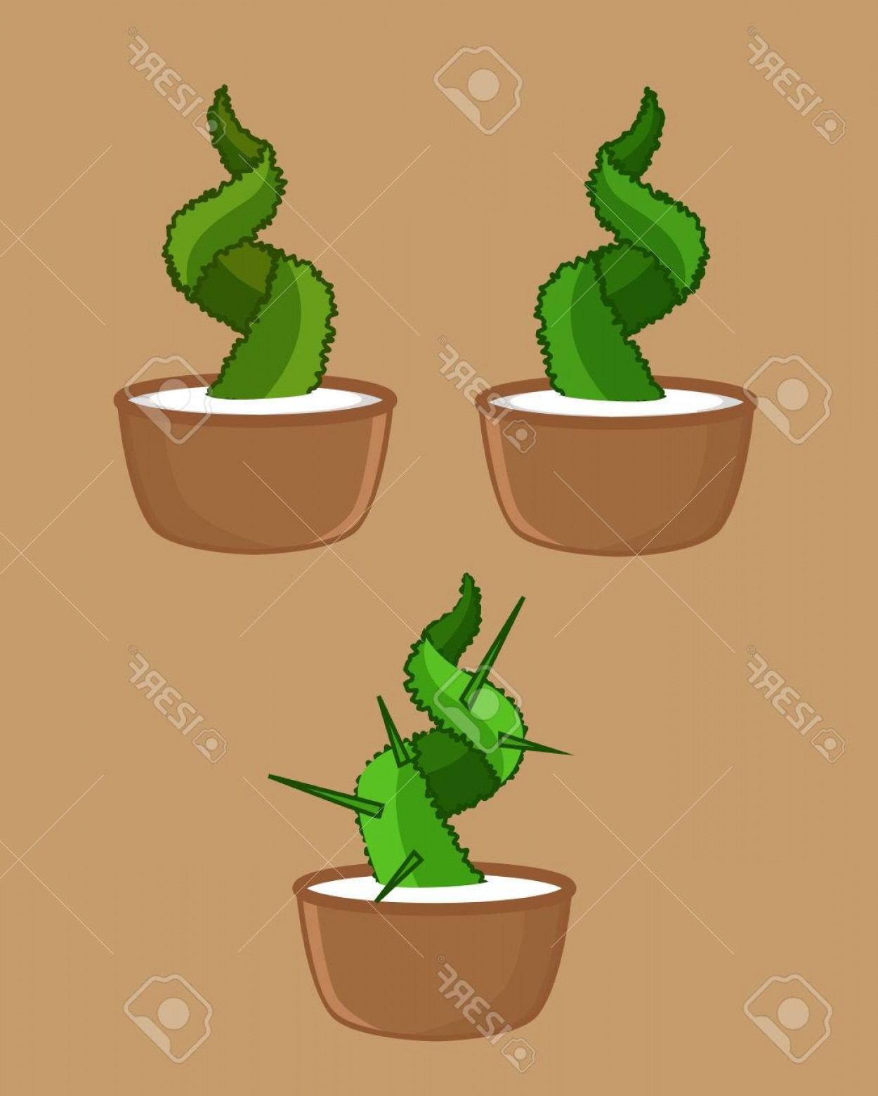 Potted Cactus Plant Vector: Photostock Vector Potted Cactus Plants Vector