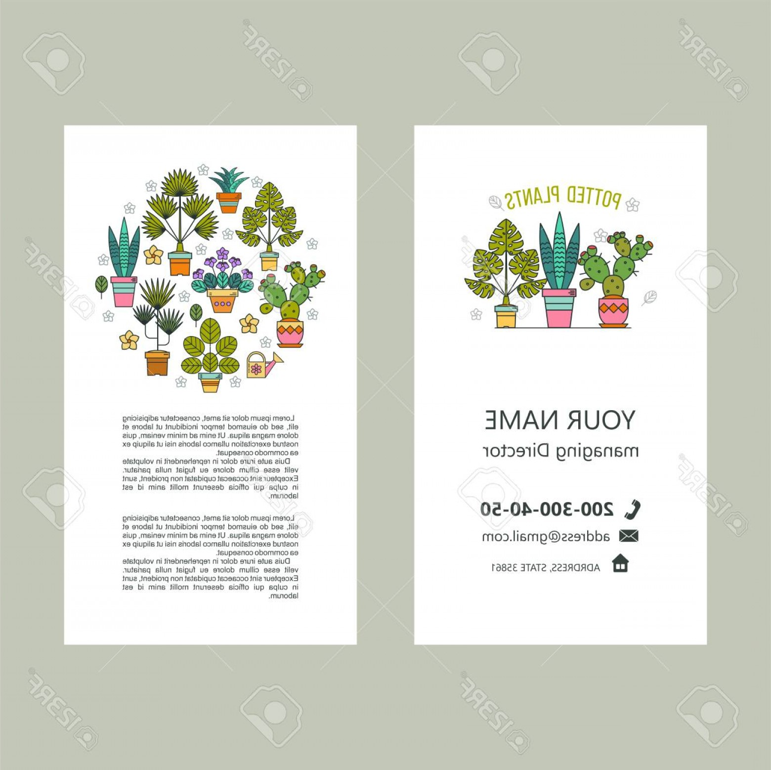 Plant Cards Vector: Photostock Vector Potted Plants Vector Illustration Business Cards Flyer Isolated On White Background
