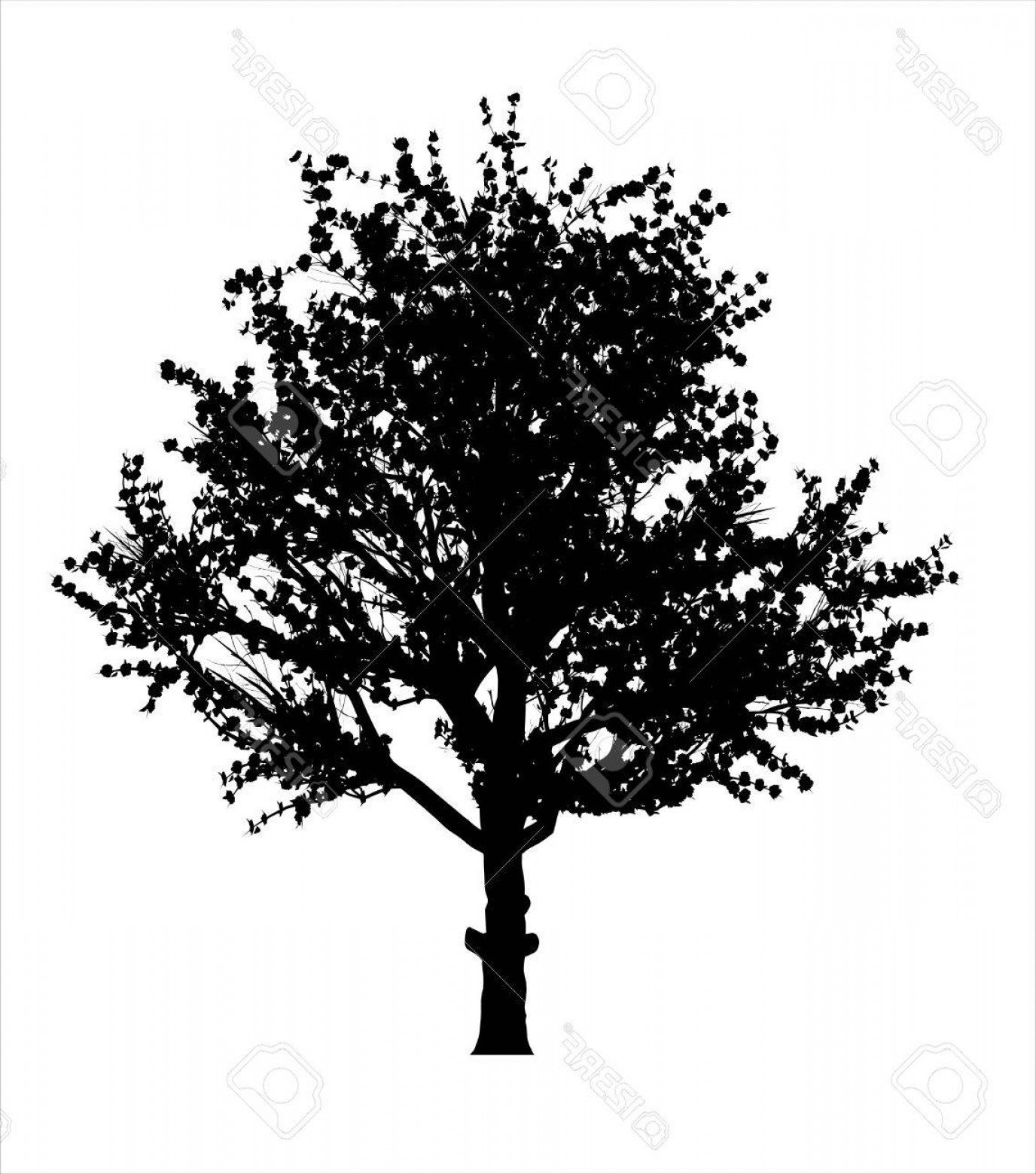 Apple Tree Vector Black: Photostock Vector Red Apple Tree Silhouette