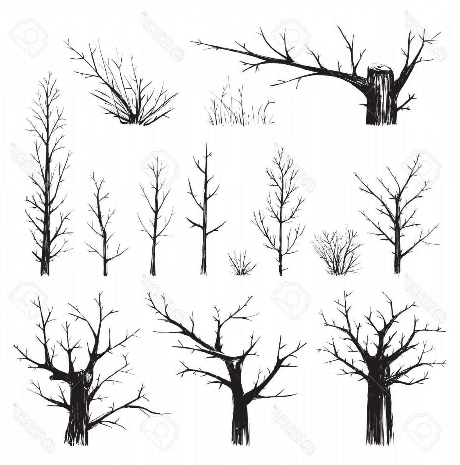 Scratch Y Drawing Vector: Photostock Vector Scratchy Trees Collection In Black Silhouettes Sketchy Set Of Freehand Trees Drawing Vector Eps Ill