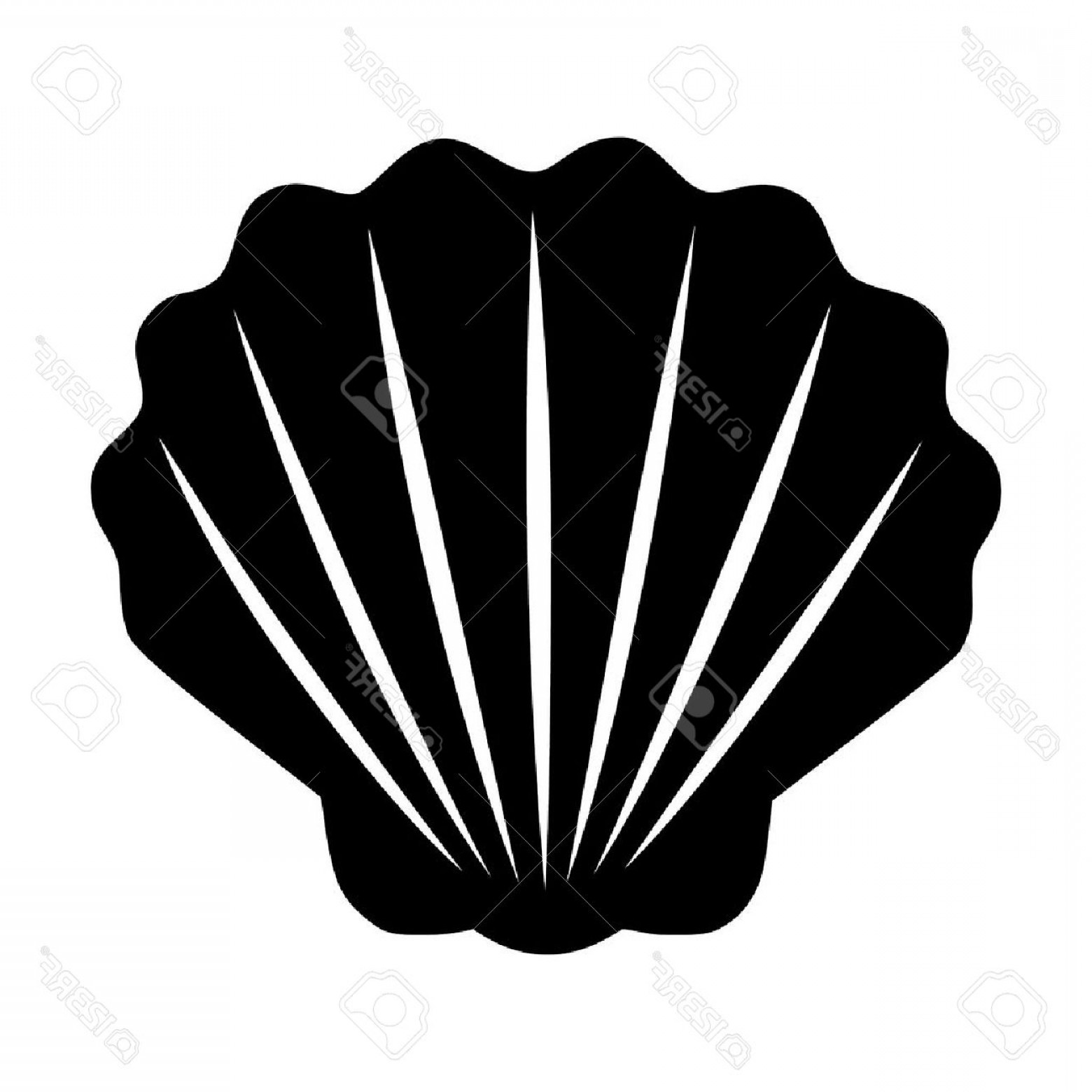 Shell Vector Icons: Photostock Vector Seashell Shellfish Flat Icon For Apps And Websites