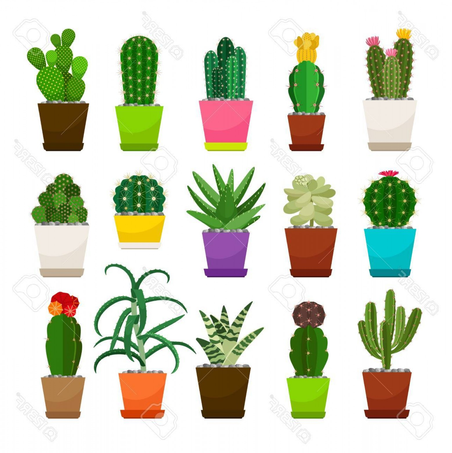 Cactus And Flower Vector: Photostock Vector Set Of Cactus Houseplants In Flower Pots Vector Icons On White Background