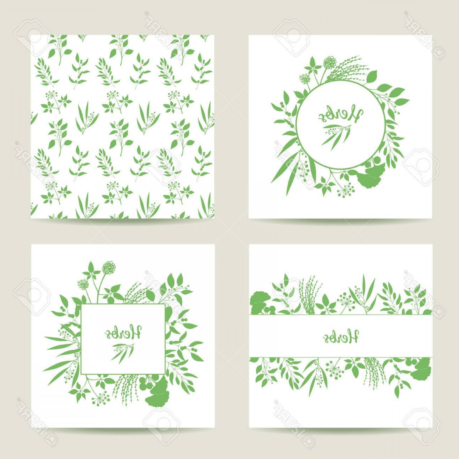Plant Cards Vector: Photostock Vector Set Of Four Herbal Card Templates Square Cards Vector Illustration Green Round And Square Frame With