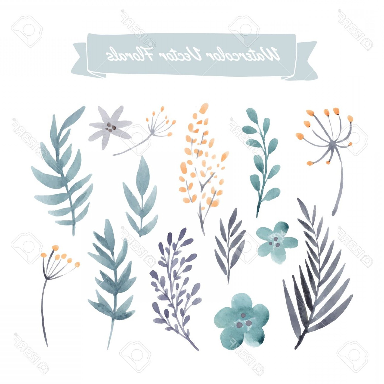 Watercolor Vector Free Designs: Photostock Vector Set Of Handpainted Watercolor Vector Flowers And Leaves Design Element For Summer Wedding Spring Con