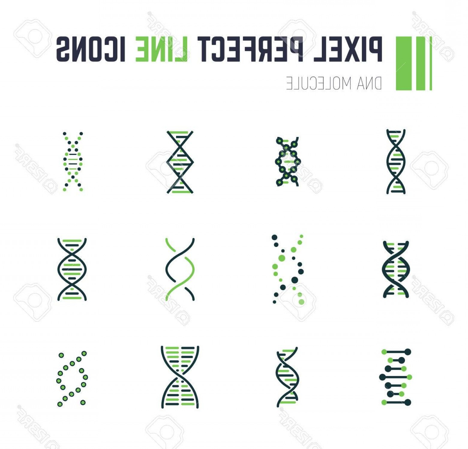 DNA Helix Vector: Photostock Vector Set Of Line Style Dna Molecule Icons Double Helix Molecule Linear Flat Vector Illustration Biotec