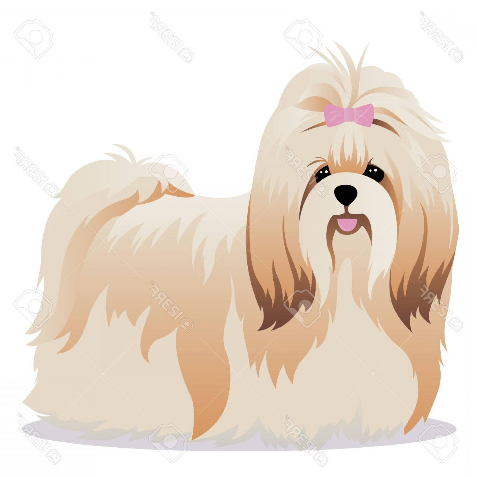 Shih Tzu Clipart-Vector: Photostock Vector Shih Tzu Dog Vector Illustration