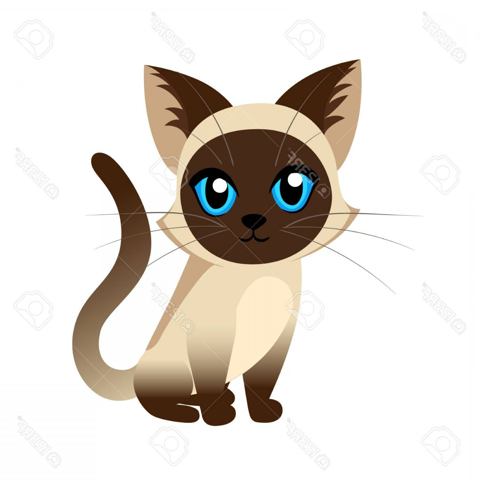 Siamese Cat Vector Transparent Background: Photostock Vector Siamese Cat The Lovely Kitten With Blue Eyes Fluffy On A White Background Spotty A Pet Cat Breeds Cu