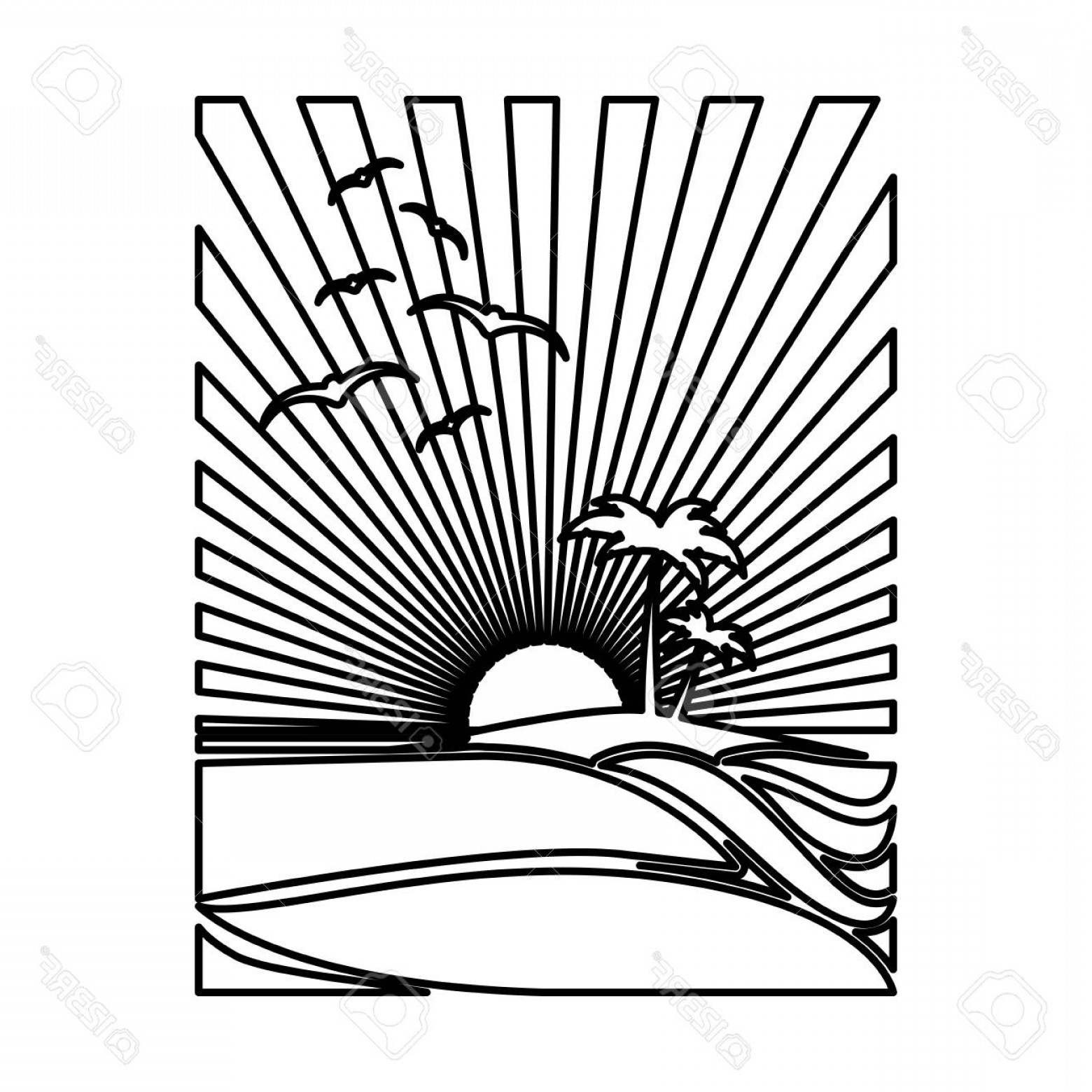 Sunset Black And White Backgrounds Vector: Photostock Vector Silhouette Rectangular Background Sunset In The Beach With Palms And Gulls Vector Illustration