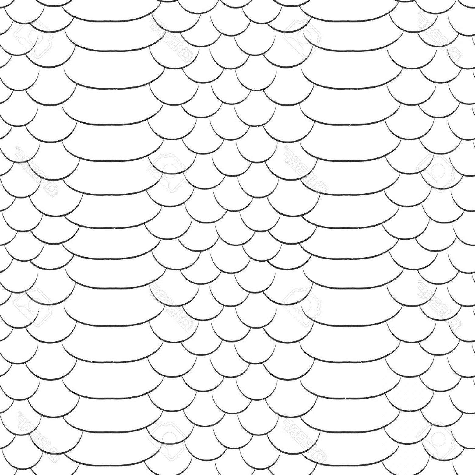 Rattlesnake Skin Vector: Photostock Vector Snake Skin Texture Seamless Pattern Black And White Background Vector Predator Skin Texture
