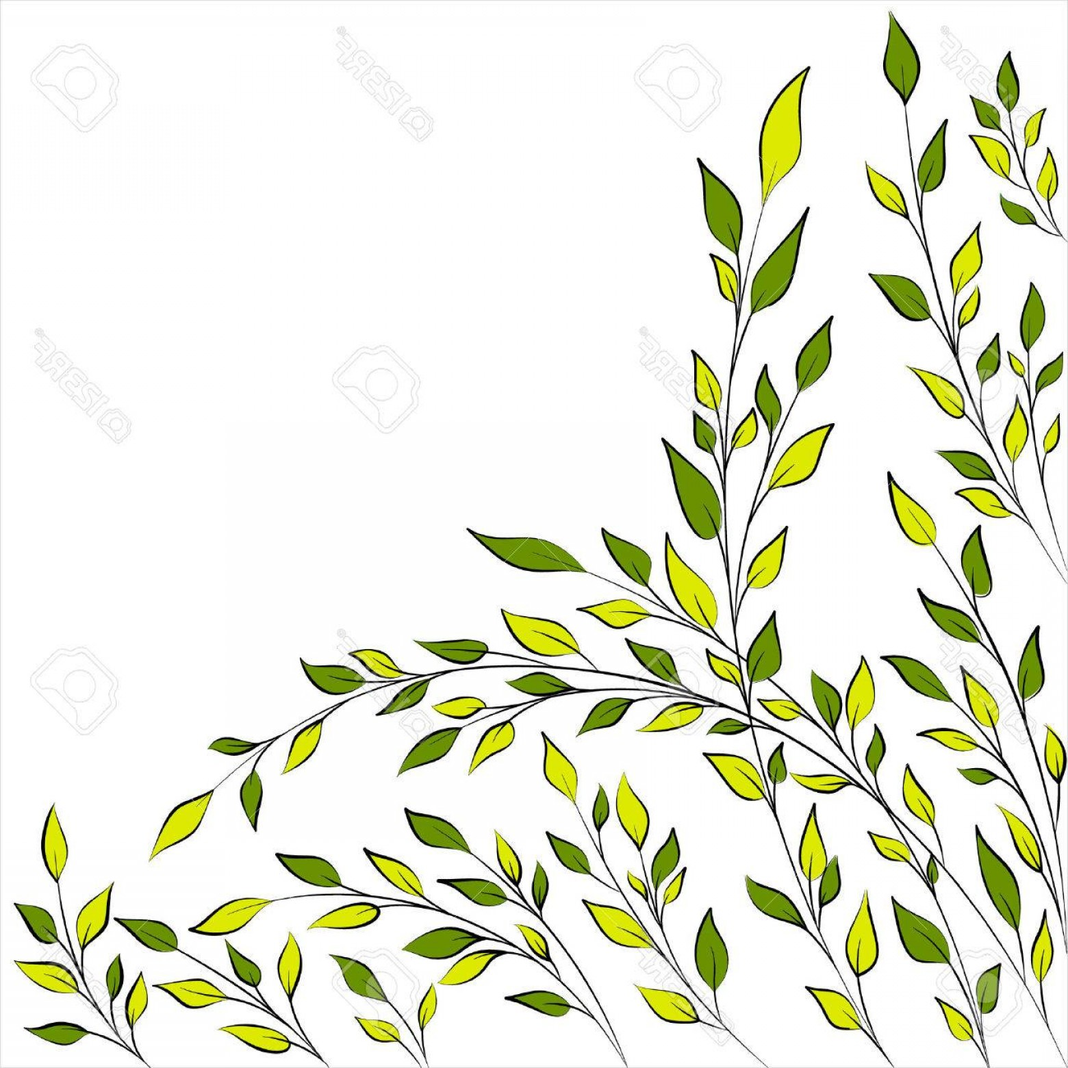 Tree Branch Vector Background: Photostock Vector Spring Or Summer Tree Branches Vector Background