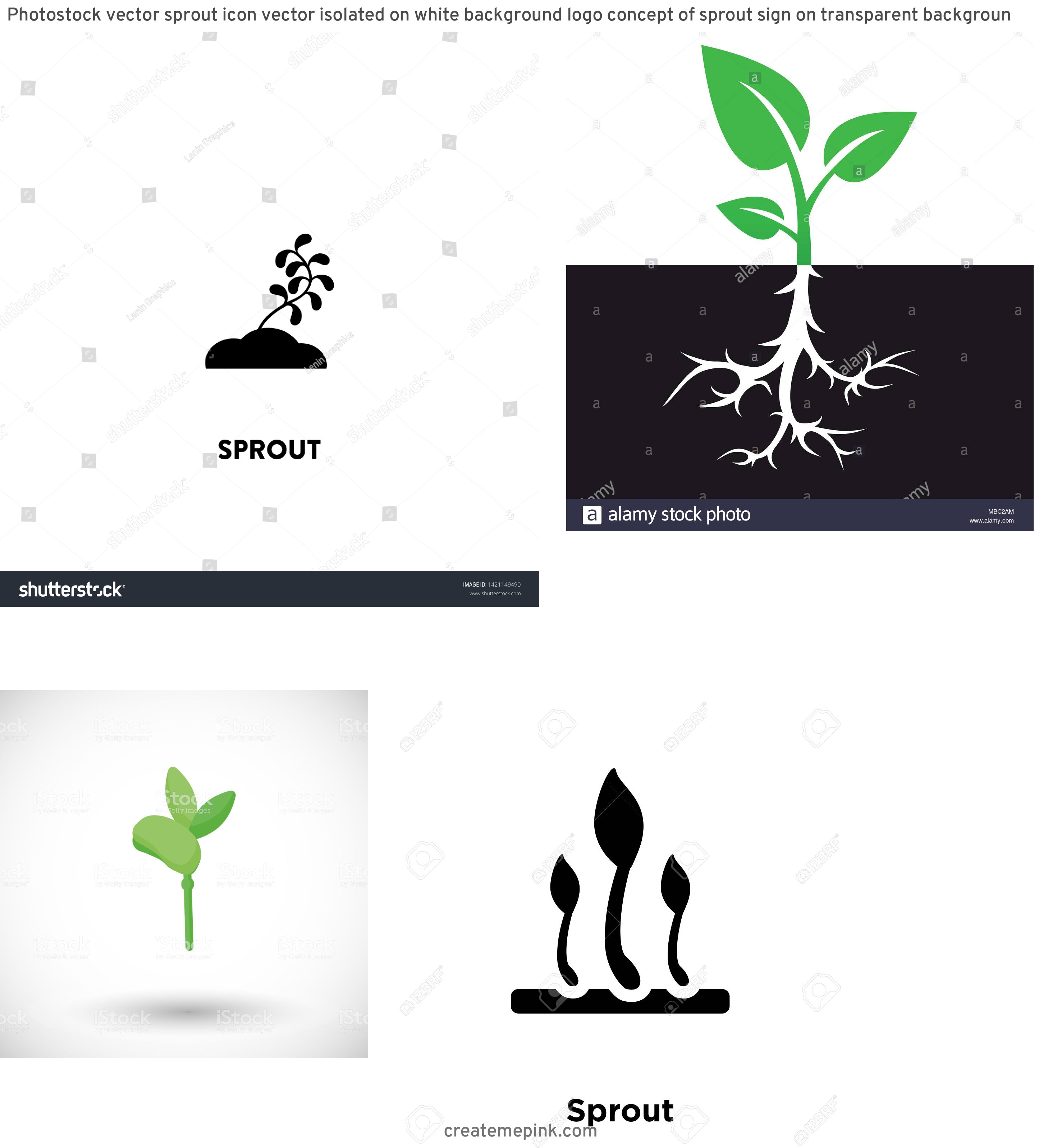 Sprout Icon Vector: Photostock Vector Sprout Icon Vector Isolated On White Background Logo Concept Of Sprout Sign On Transparent Backgroun