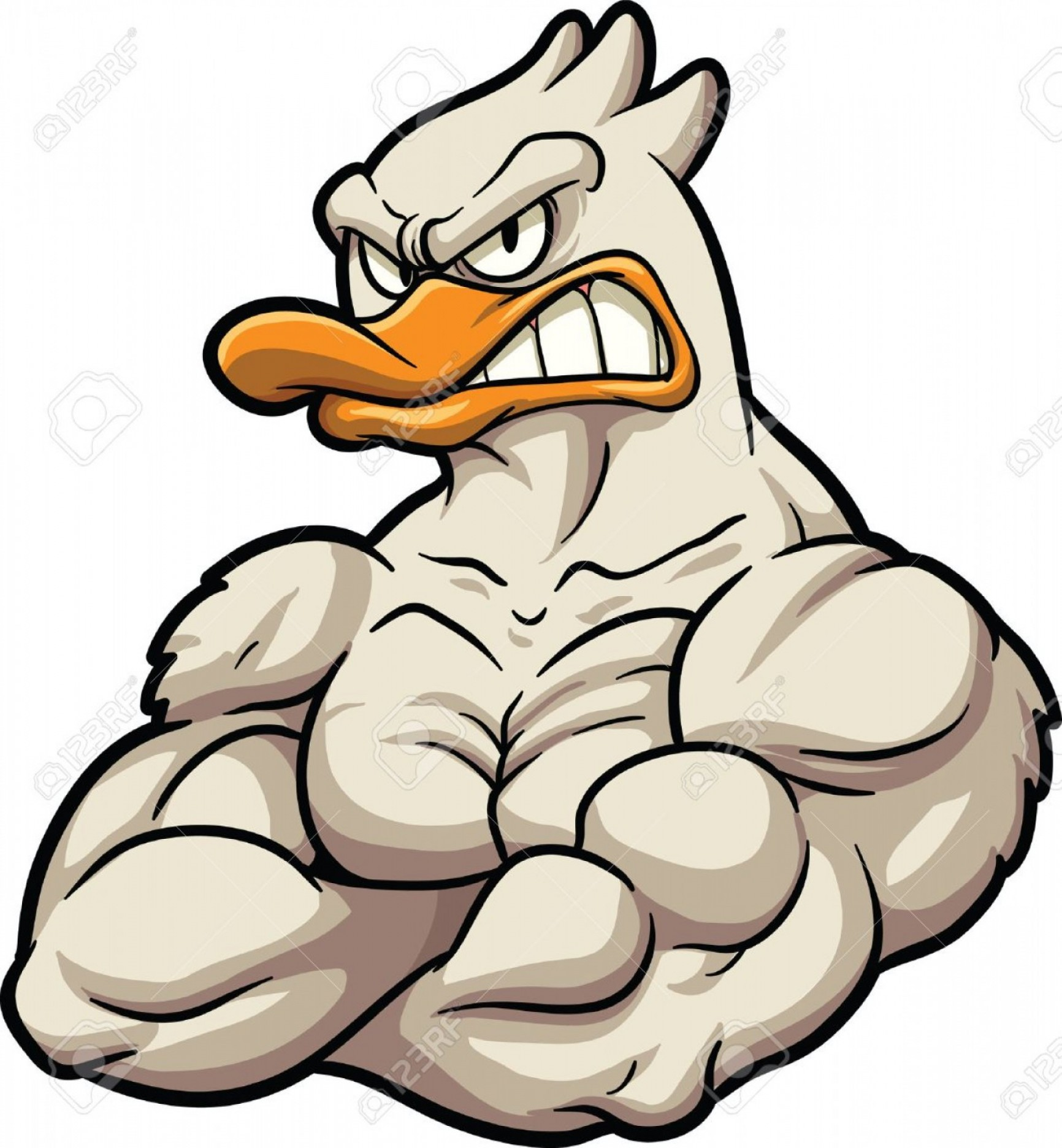 Cartoon Duck Vector: Photostock Vector Strong Cartoon Duck Mascot Vector Clip Art Illustration All In A Single Layer