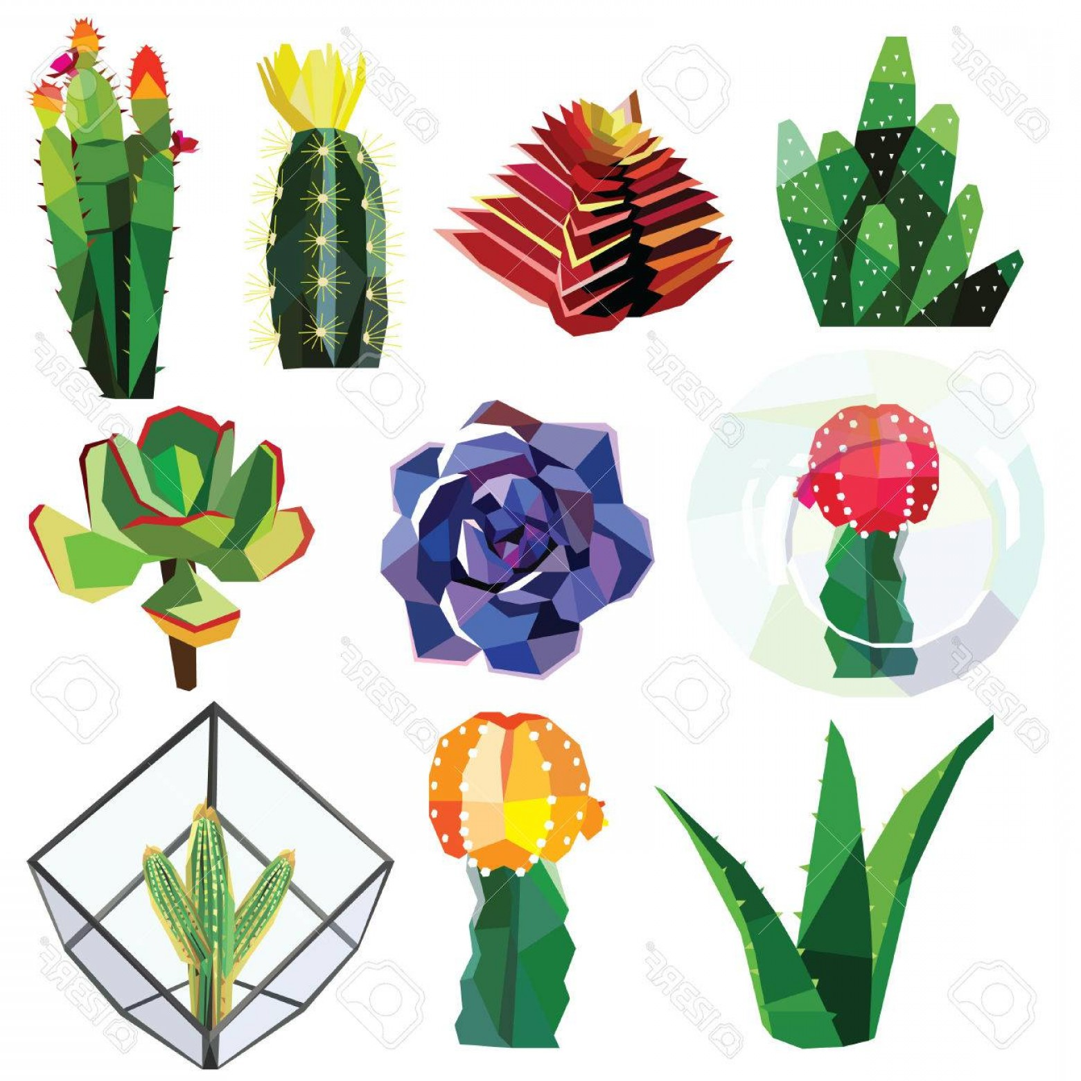 Cactus And Flower Vector: Photostock Vector Succulent Cactus Flower Low Poly Colorful Set With Glass Geometric Terrariums Vector Illustration Is