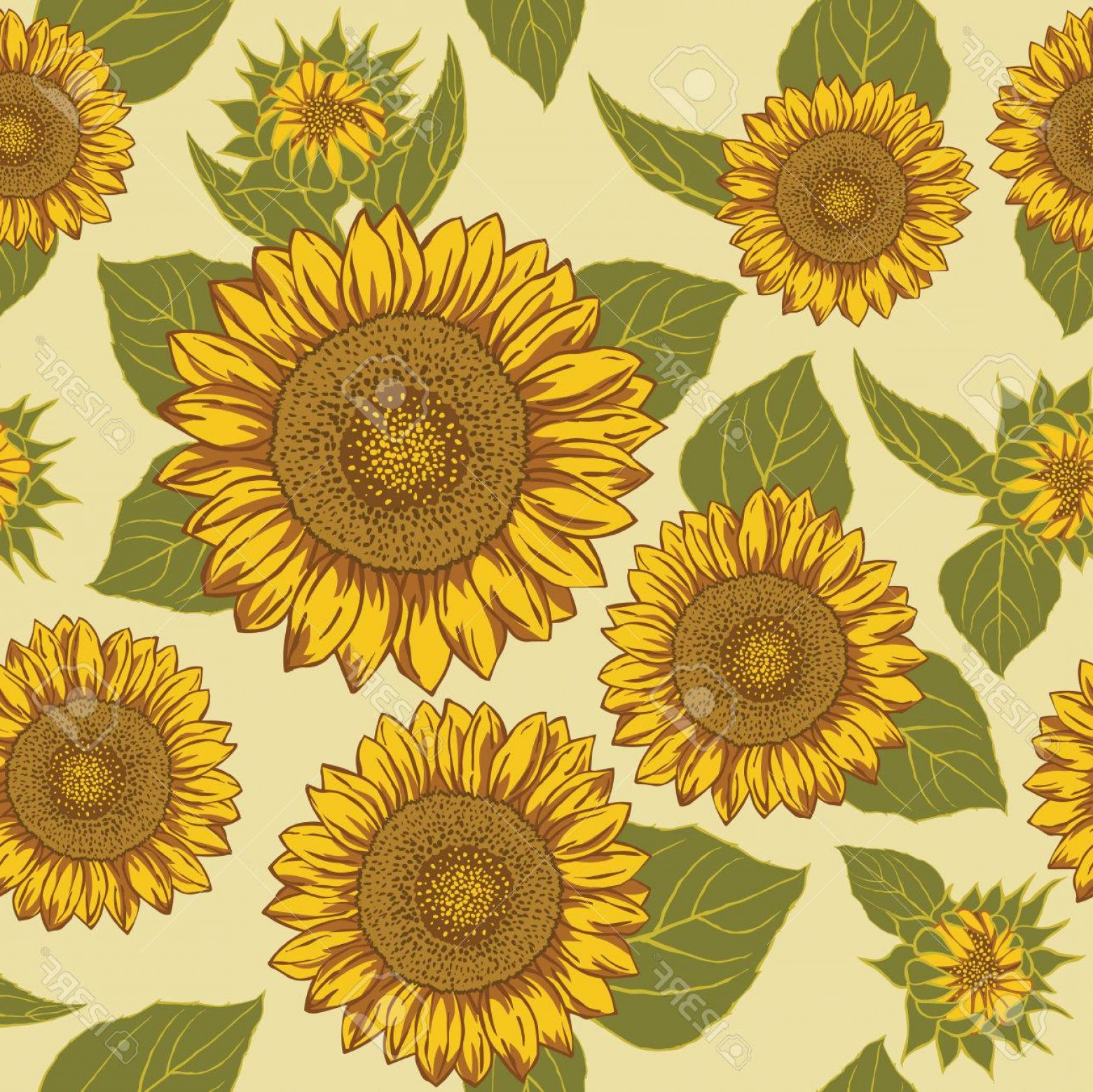 Sunflower Vector Pattern: Photostock Vector Sunflower Seamless Background Pattern Vector