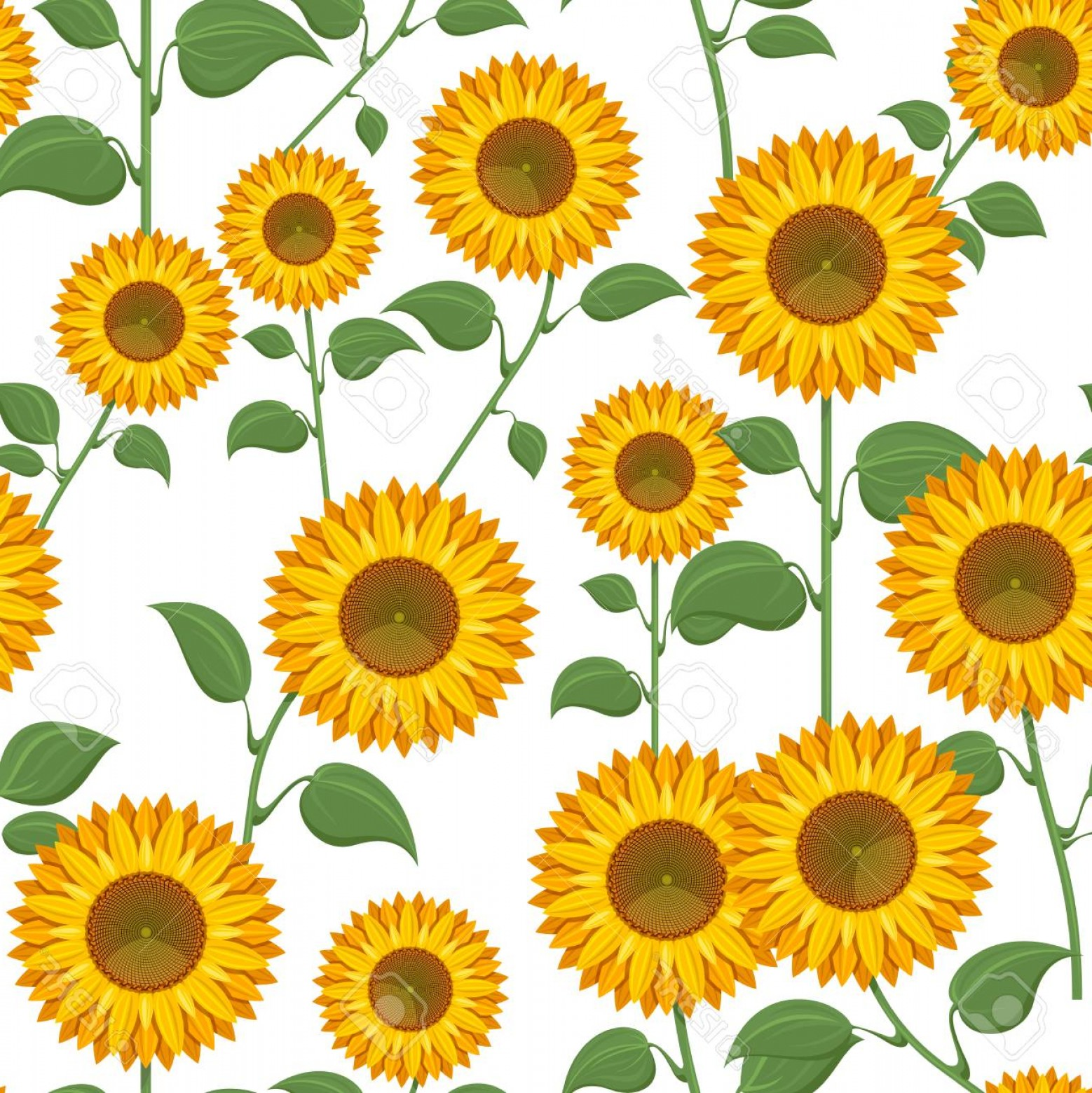 Sunflower Vector Pattern: Photostock Vector Sunflowers On White Background Sunflower With Green Leaves Seamless Pattern Vector Illustration