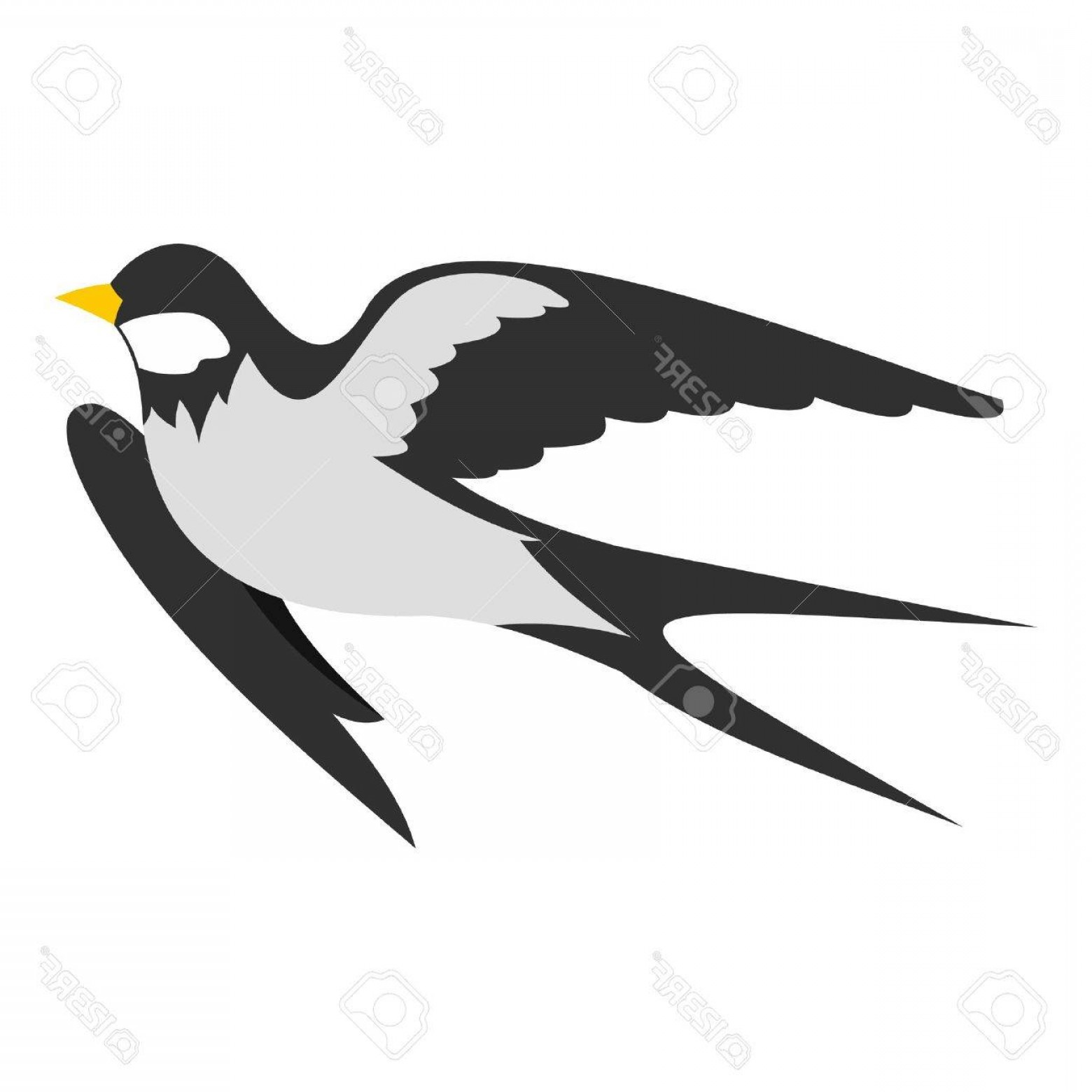 Swallow Vector: Photostock Vector Swallow Icon Flat Illustration Of Swallow Vector Icon For Web