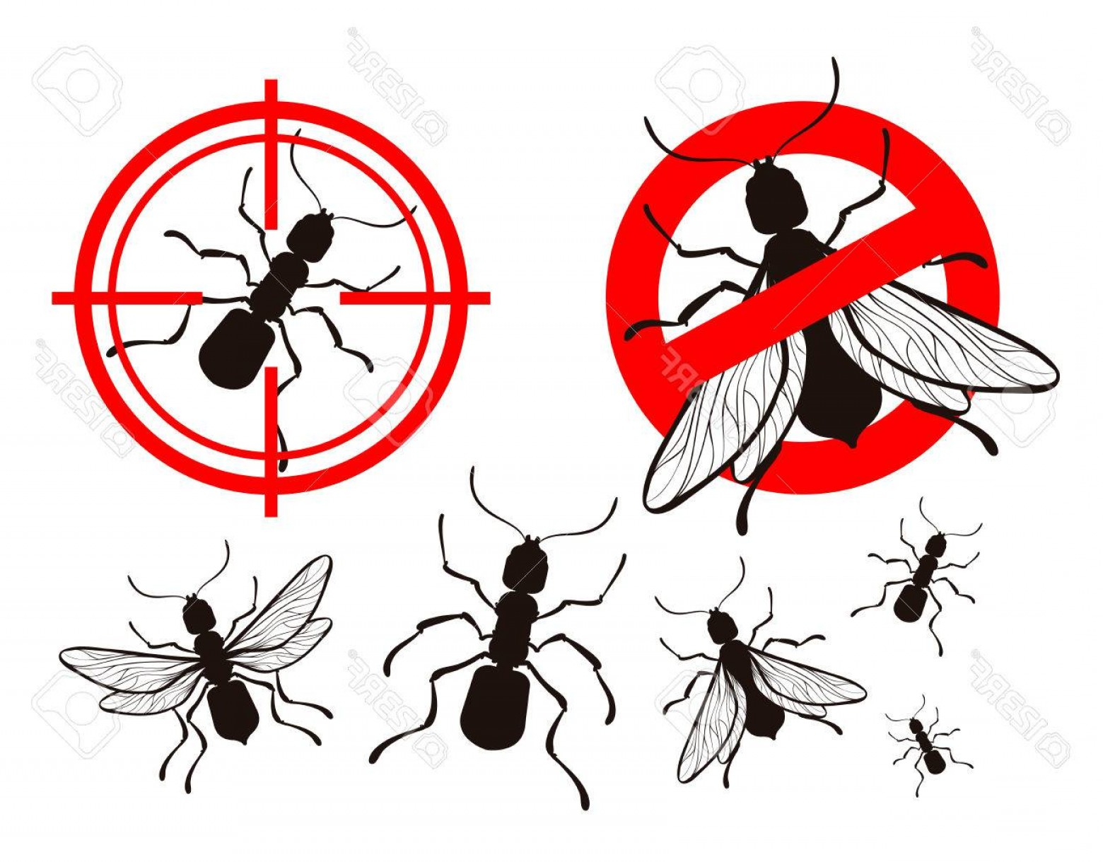Termites With Wings Vector: Photostock Vector Termite Or Ant Pest Control Icons Set Vector Illustration