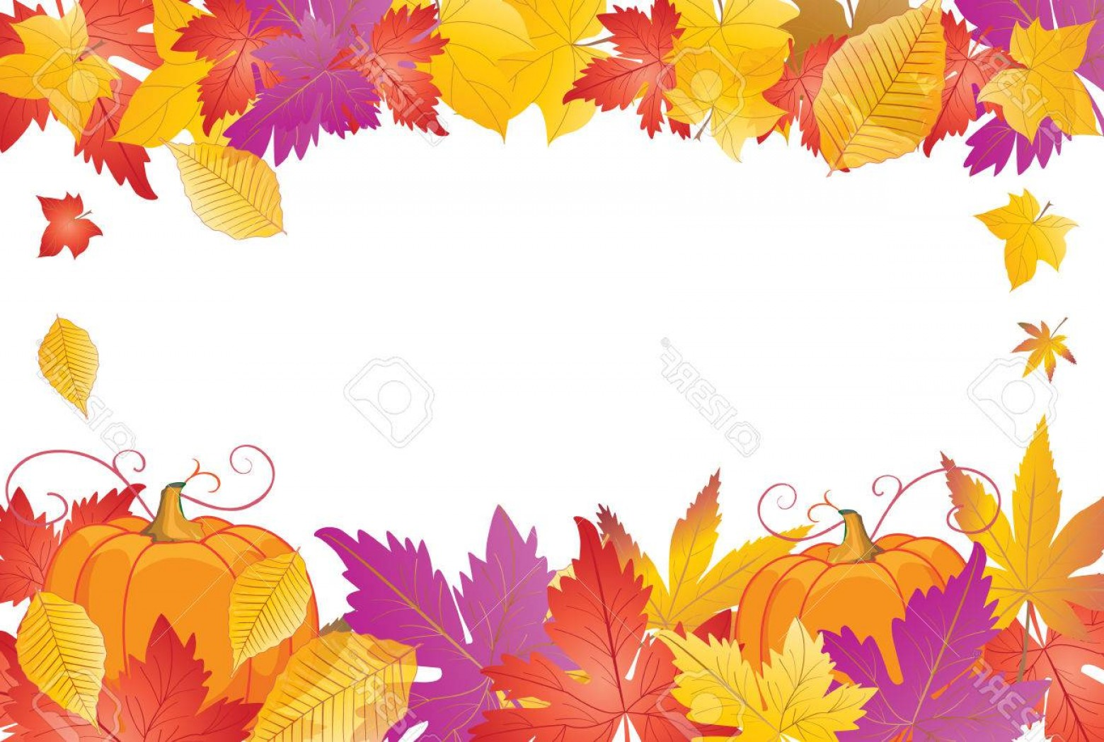 Thanksgiving Border Vector: Photostock Vector Thanksgiving Holiday Background Fall Colorful Leaves And Pumpkin Frame Autumn Maple Leaves Border Ve