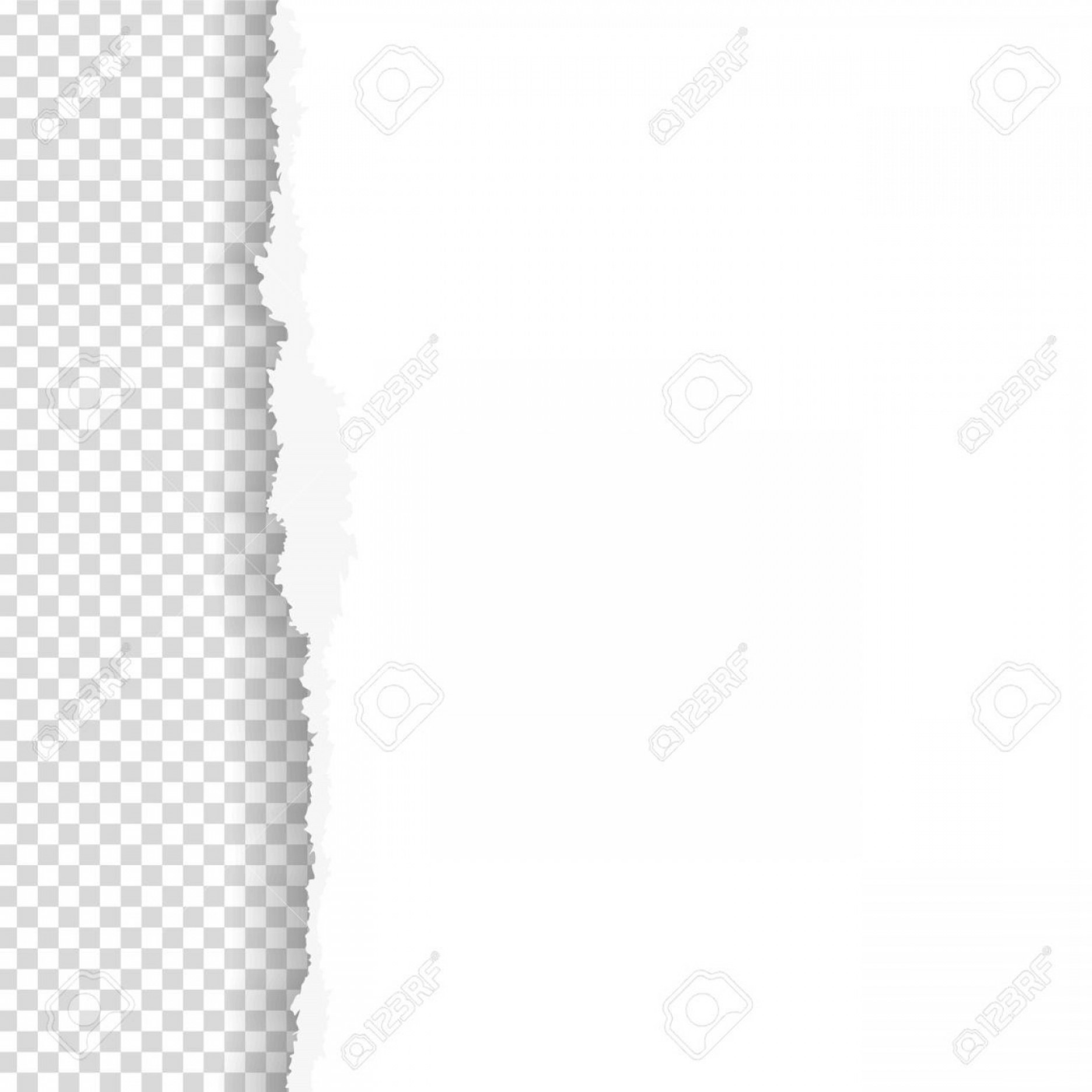 Ripped Black And White Vector: Photostock Vector Torn Paper With Ripped Edge