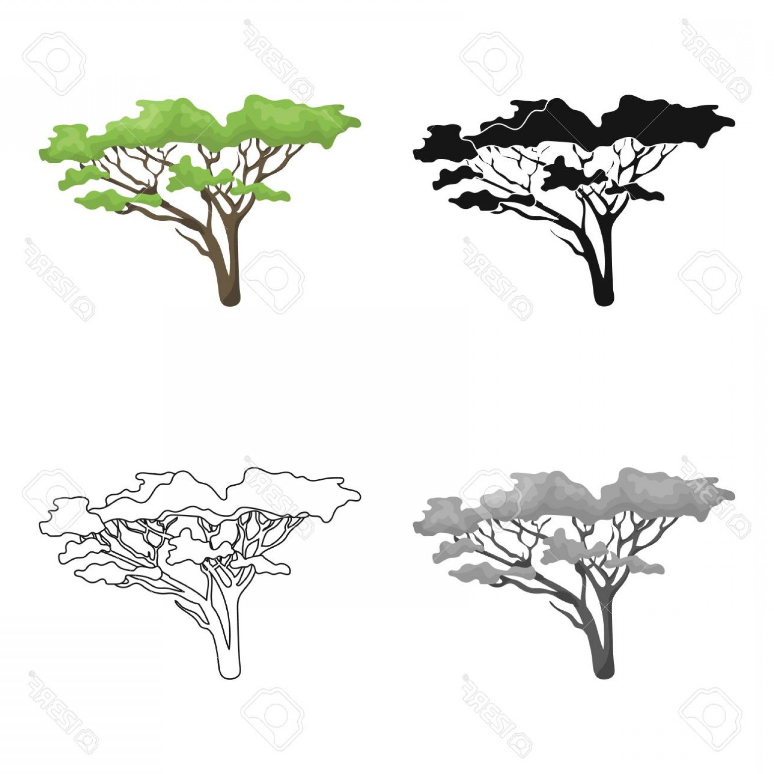 Contoon Free Black Vector Tree: Photostock Vector Tree In The Savannah African Safari Single Icon In Cartoon Style Vector Symbol Stock Illustration We