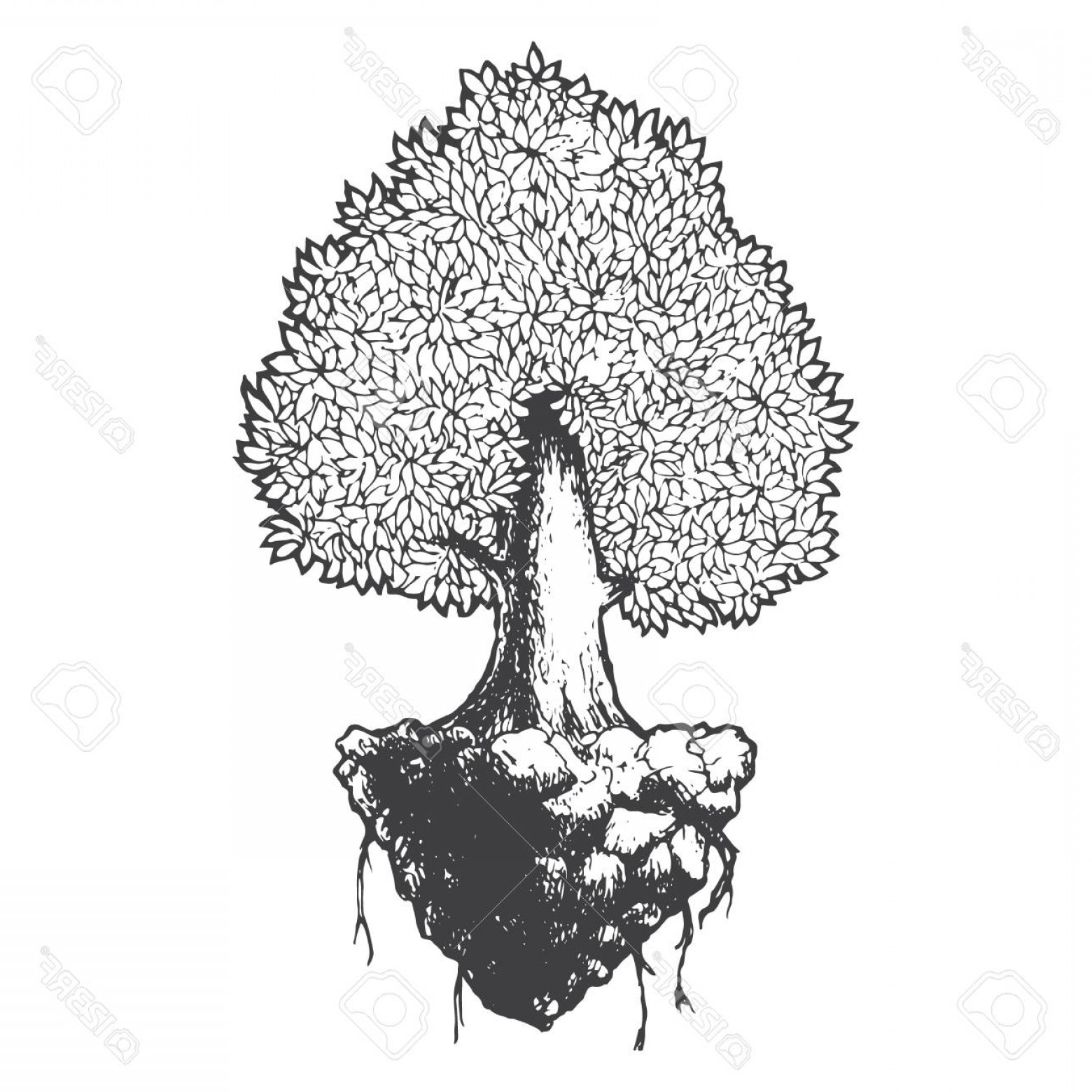 Contoon Free Black Vector Tree: Photostock Vector Tree Life Black And White Sketch Cartoon Doodle Vector Illustration