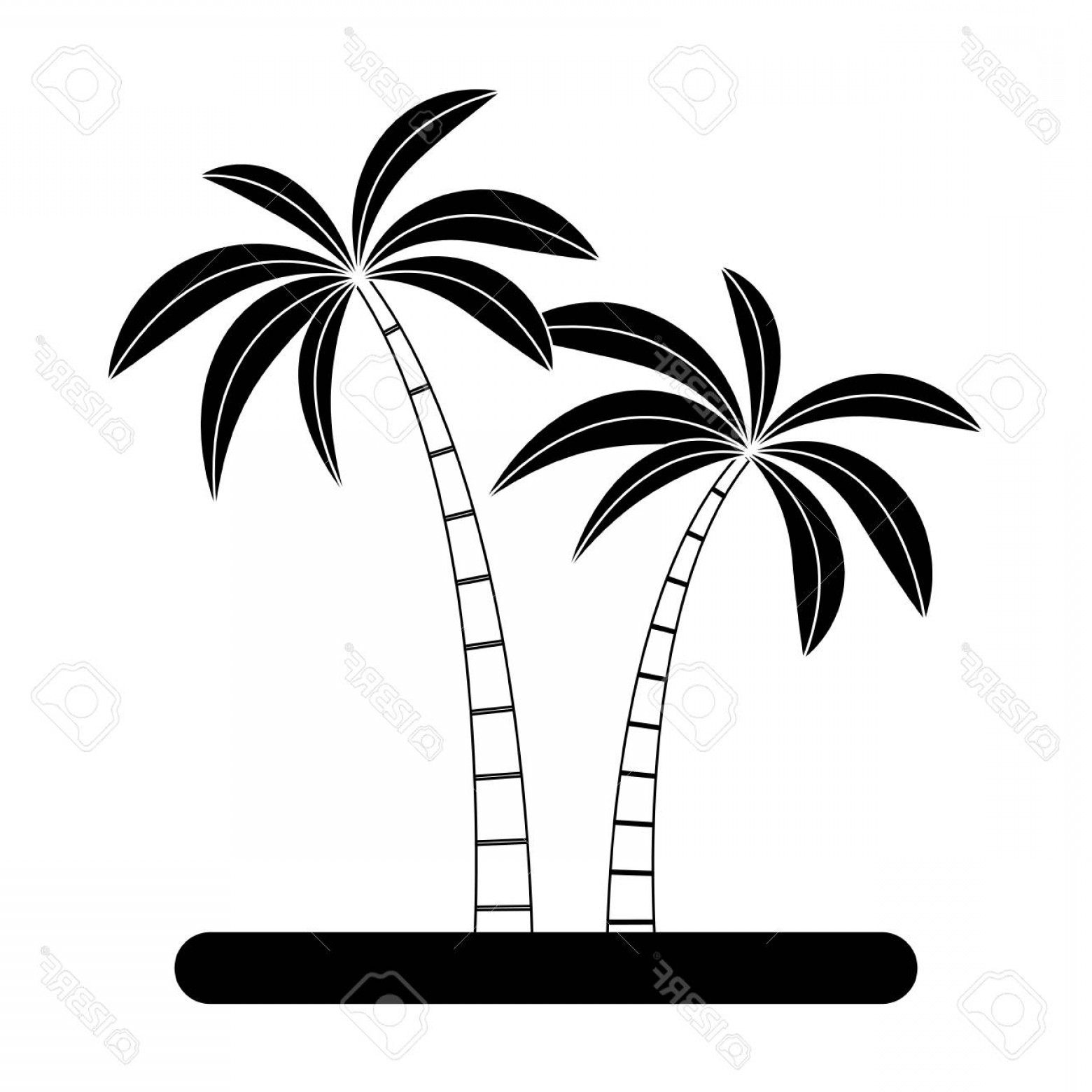 Contoon Free Black Vector Tree: Photostock Vector Tree Palms Cartoon Vector Illustration Graphic Design