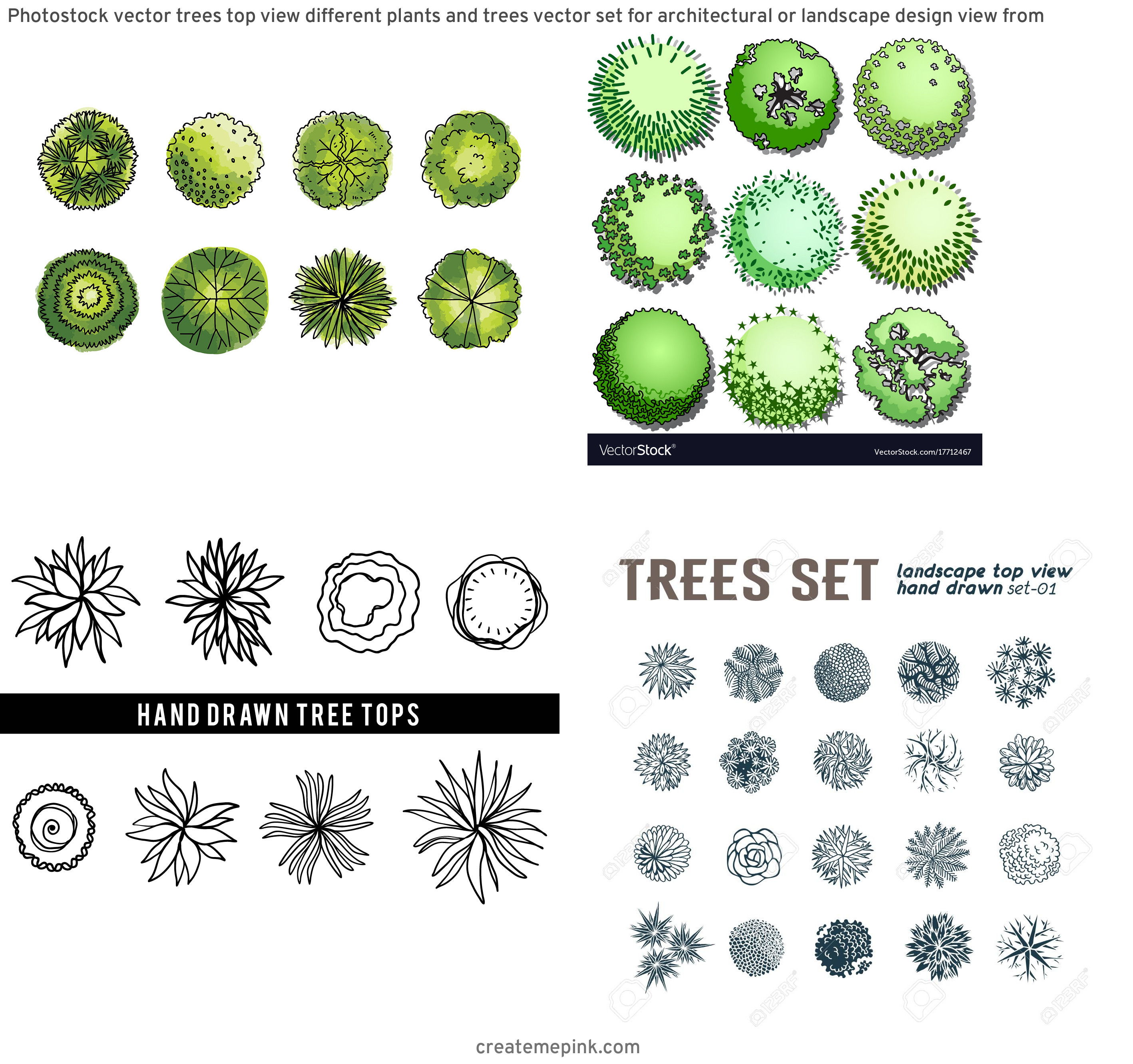 Drawn Free Vector Tree Tops: Photostock Vector Trees Top View Different Plants And Trees Vector Set For Architectural Or Landscape Design View From