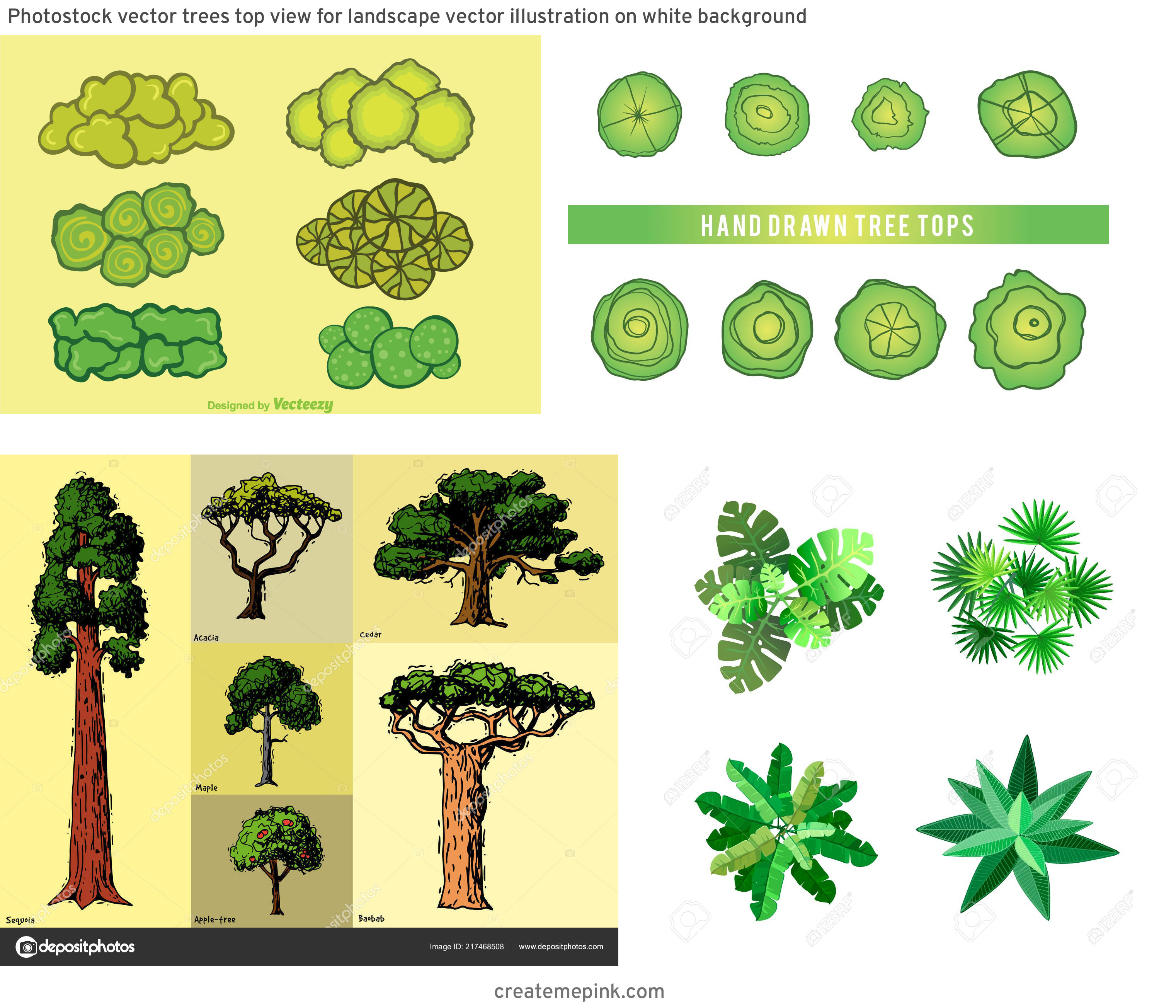 Drawn Free Vector Tree Tops: Photostock Vector Trees Top View For Landscape Vector Illustration On White Background