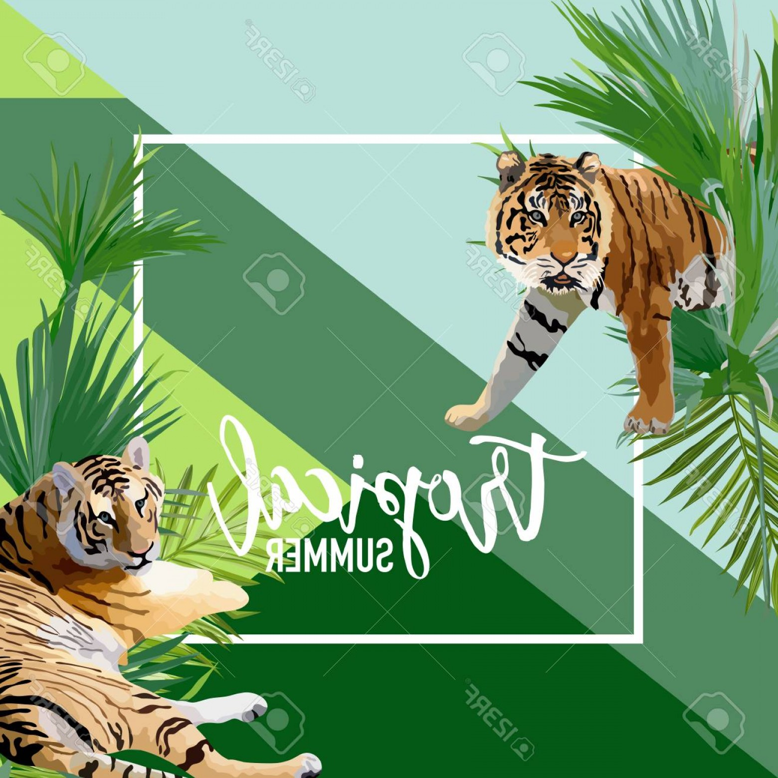 Green Tiger Vector: Photostock Vector Tropical Flowers And Tiger Summer Banner Graphic Background Exotic Floral Invitation Flyer Or Card M