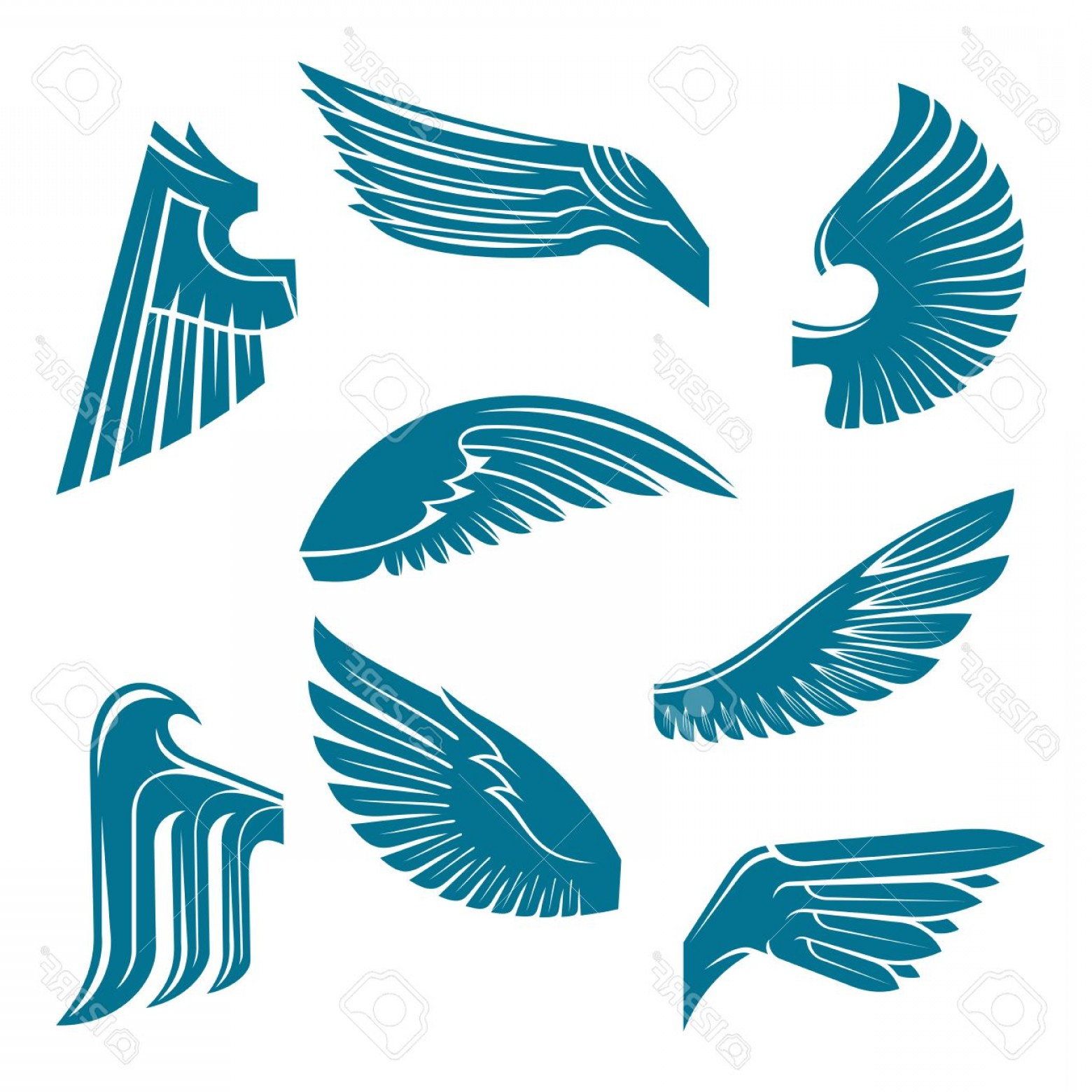 Falcon Wing Vector Art: Photostock Vector Tucked And Spread Wings Vintage Heraldic Symbols Of Blue Feathered Wings Of Eagle Swan Falcon Or Rav