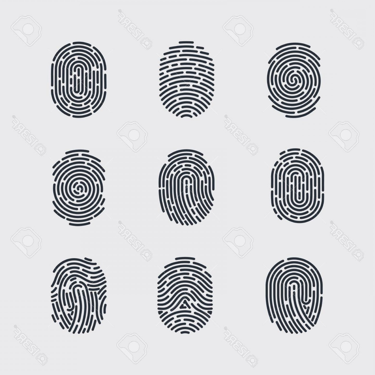 Security Vector Patterns: Photostock Vector Types Of Fingerprint Patterns For Identity Person Security Id On Gray For Design