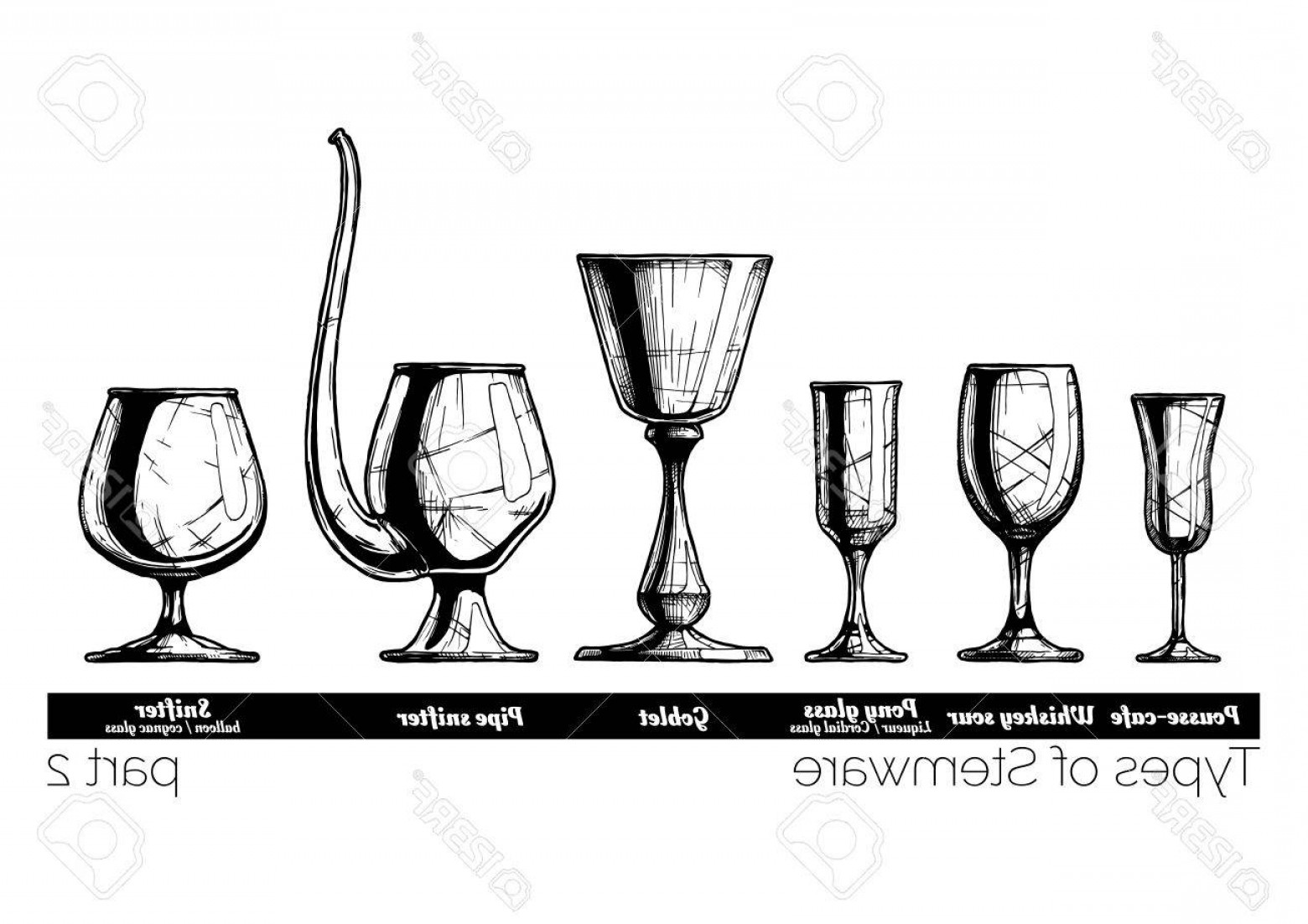 Beer Chalice Vector Logo: Photostock Vector Types Of Stemware Pousse Cafe Whiskey Sour Pony Glass Goblet Pipe Snifter And Balloon Illustration O